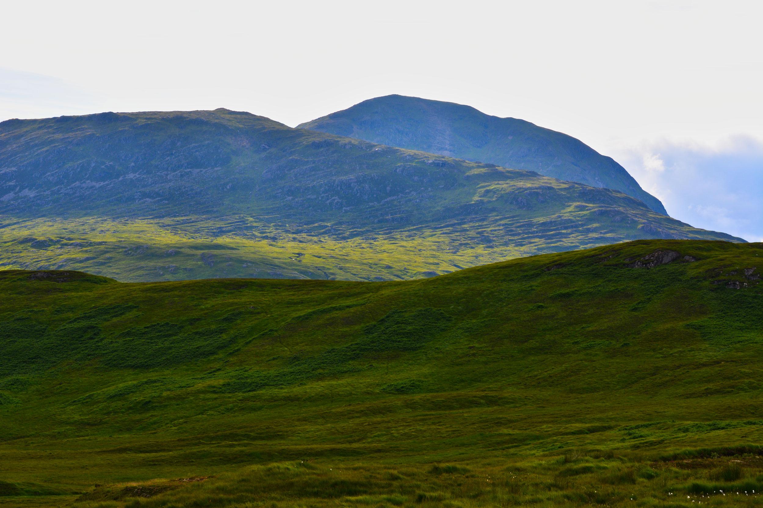 Zielony Rannoch Moor, Szkocja, UK