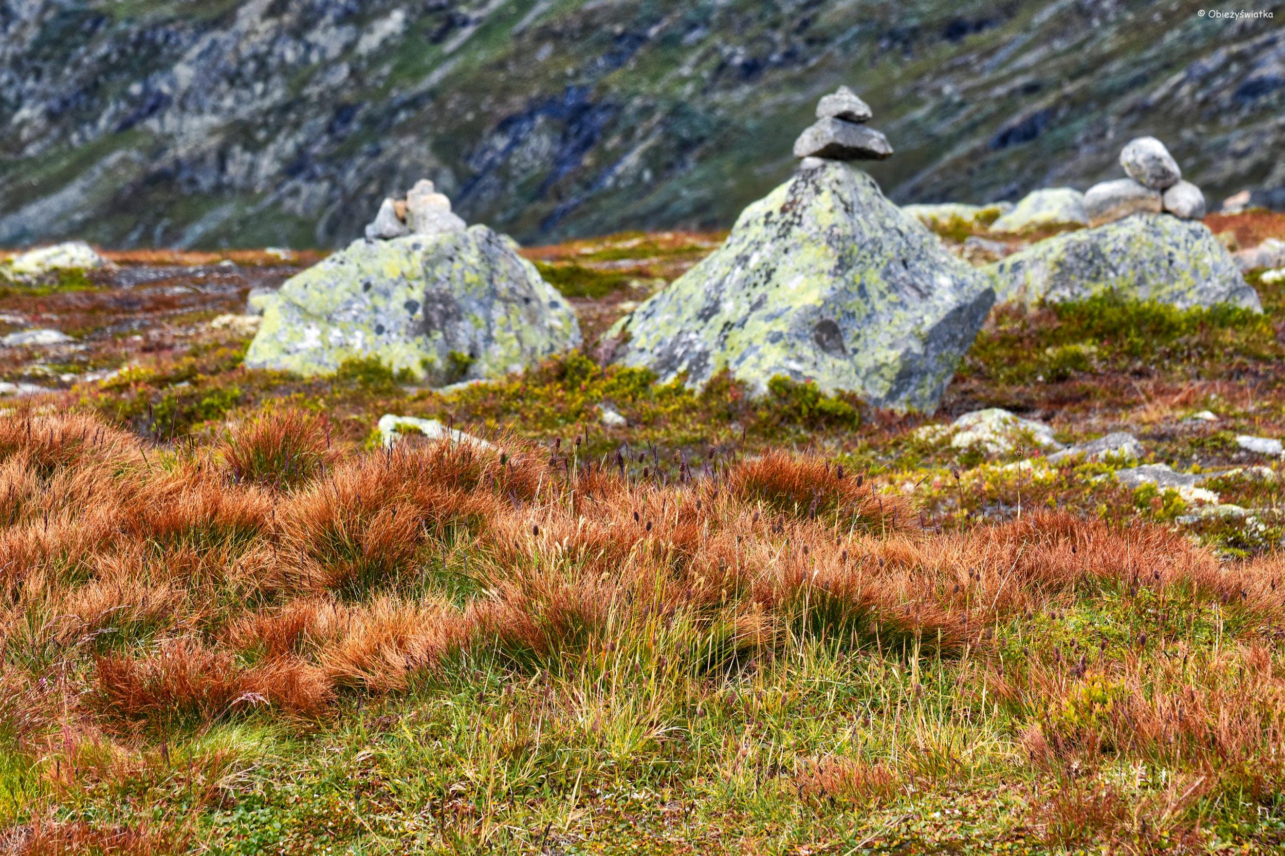 Wędrując przez Aurlandsfjellet, Norwegia