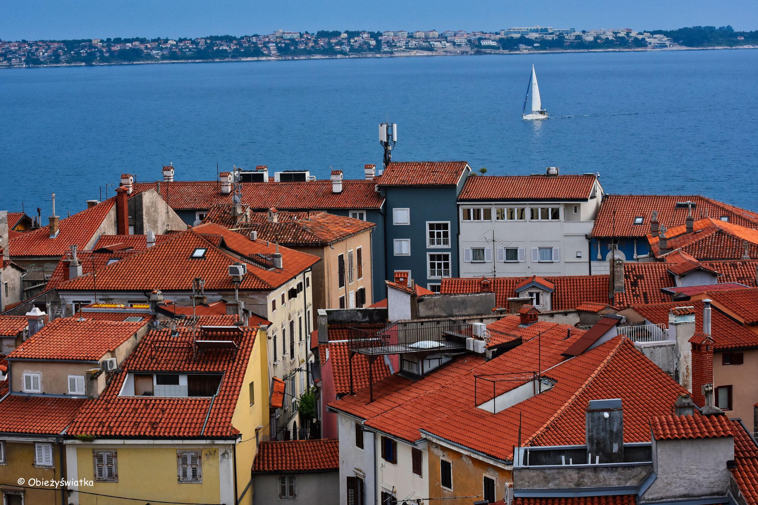 Ceglasty kolor dachu i błękit morza, Piran, Słowenia