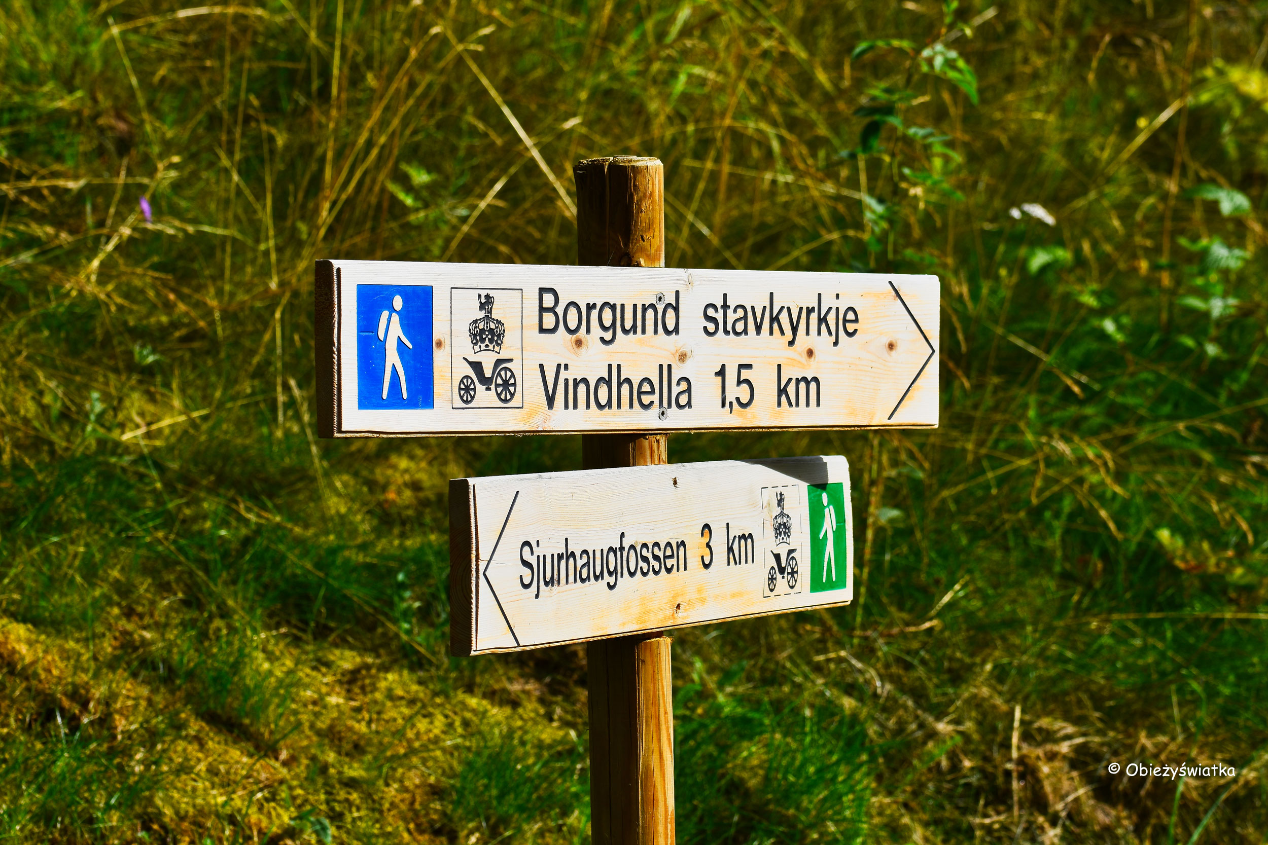 Szlakiem przez Vindhella, Norwegia