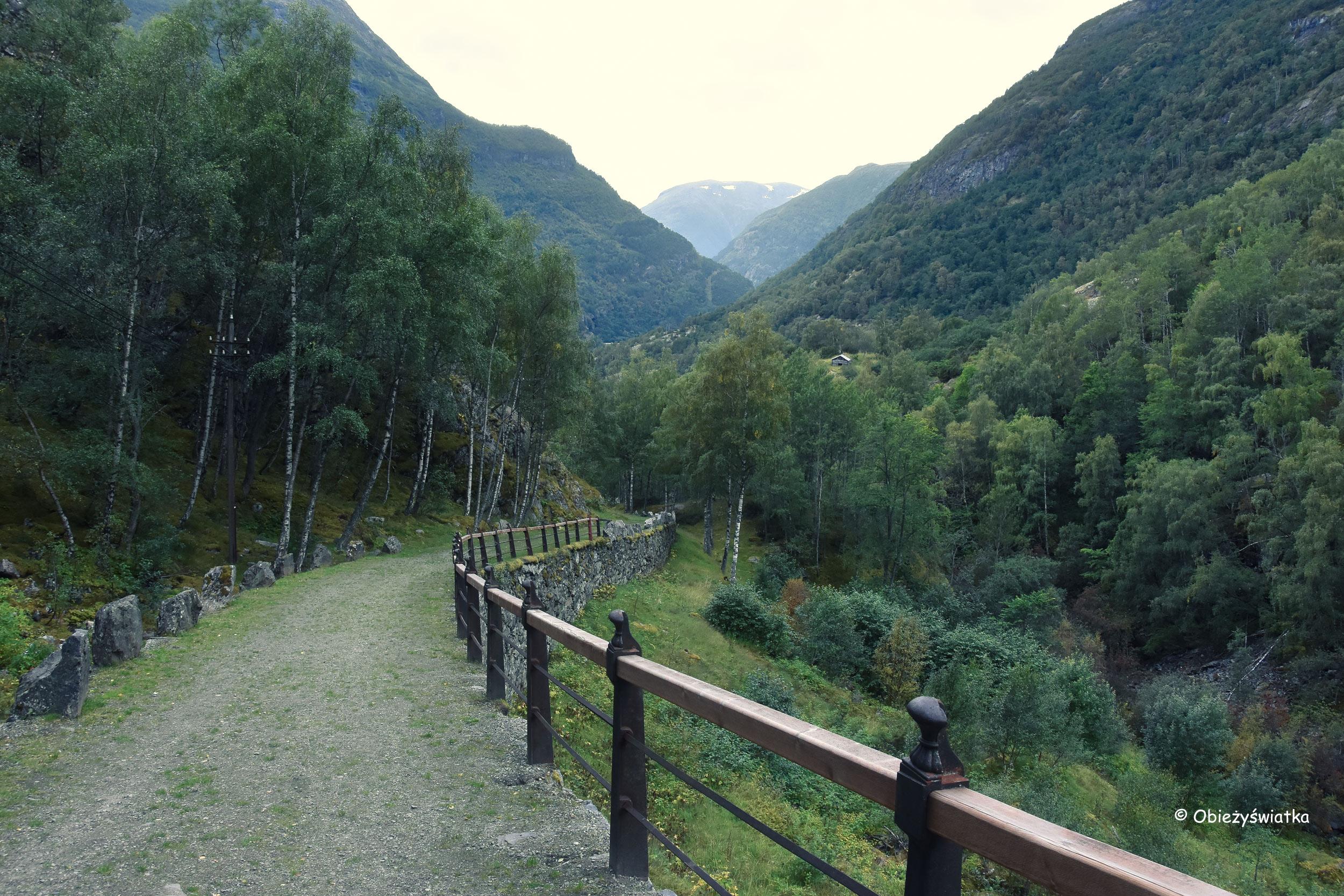 Vindhella i Zielona Vindhellavegen, Norwegia