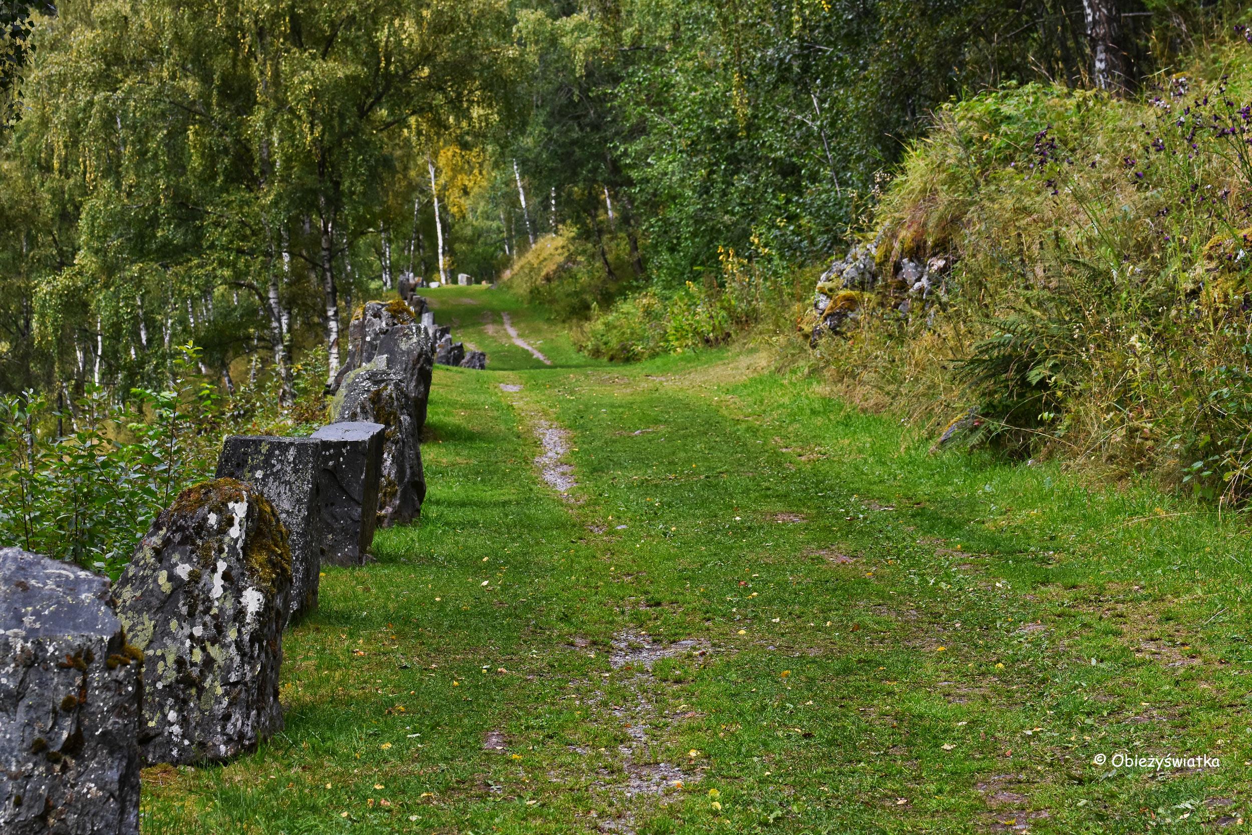Zielona Vindhellavegen, Norwegia