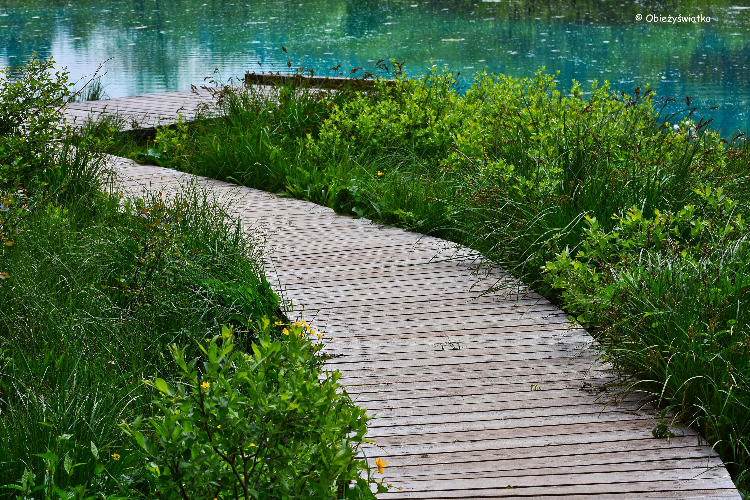 Kładka nad Jeziorem Zelenci, Słowenia