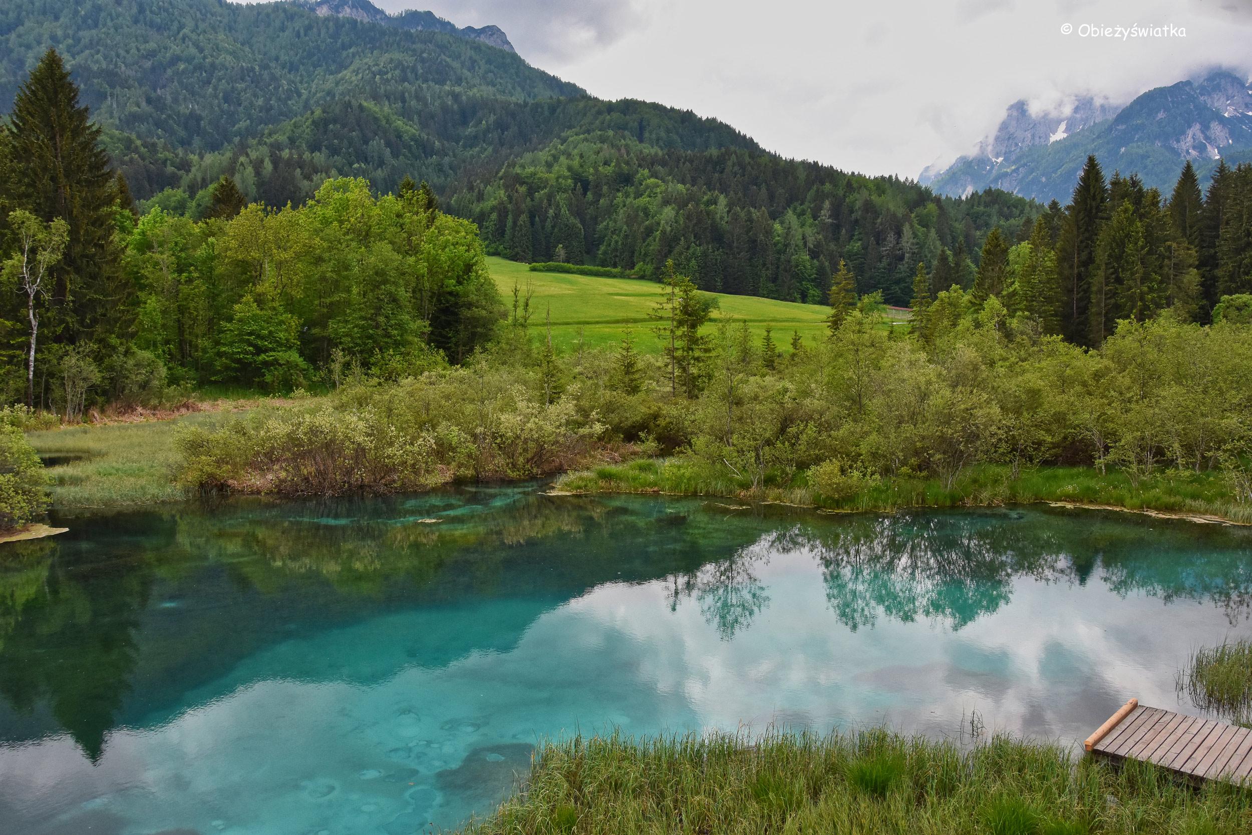 Alpy i Jezioro Zelenci, Słowenia