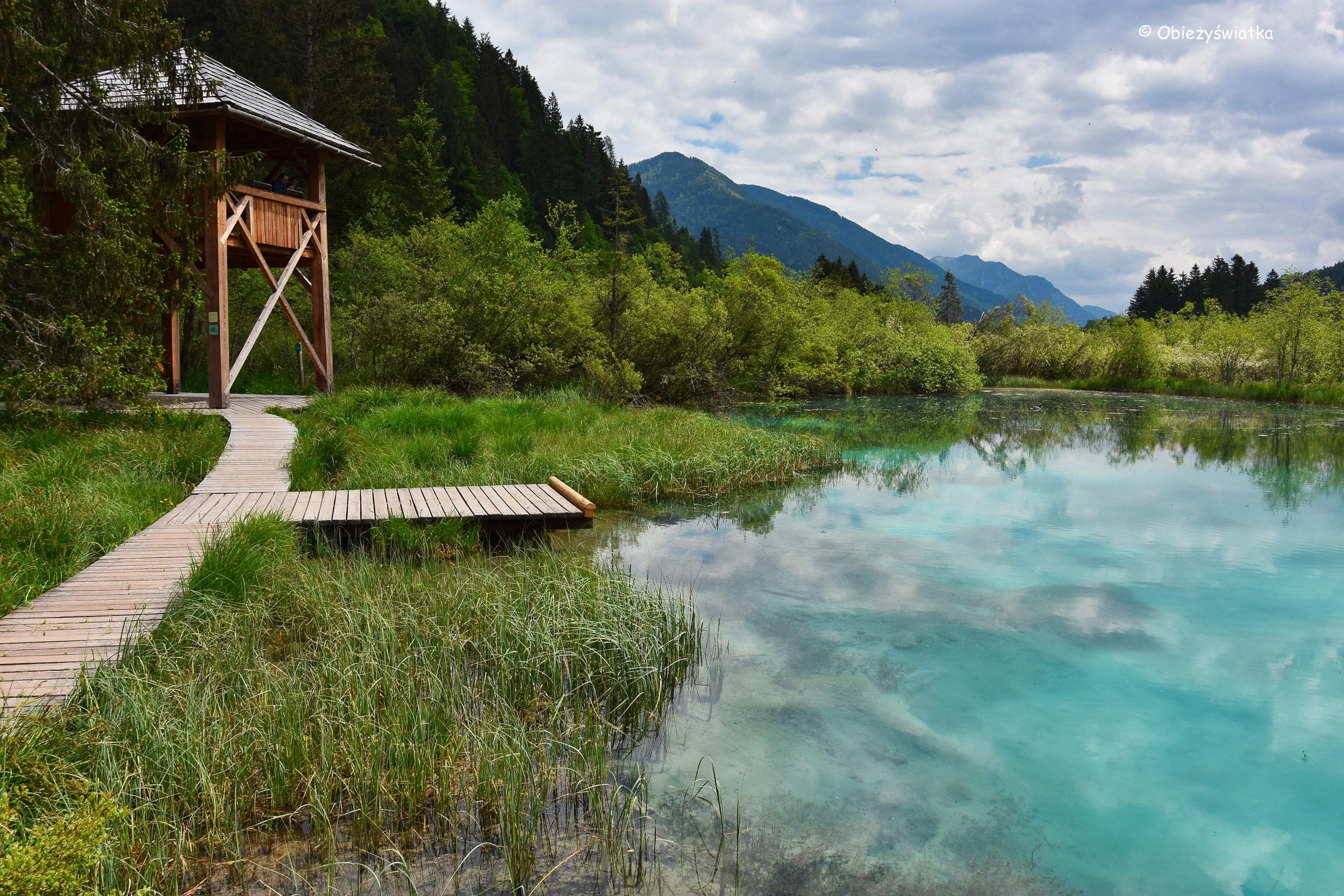 Nad Jeziorem Zelenci, Słowenia