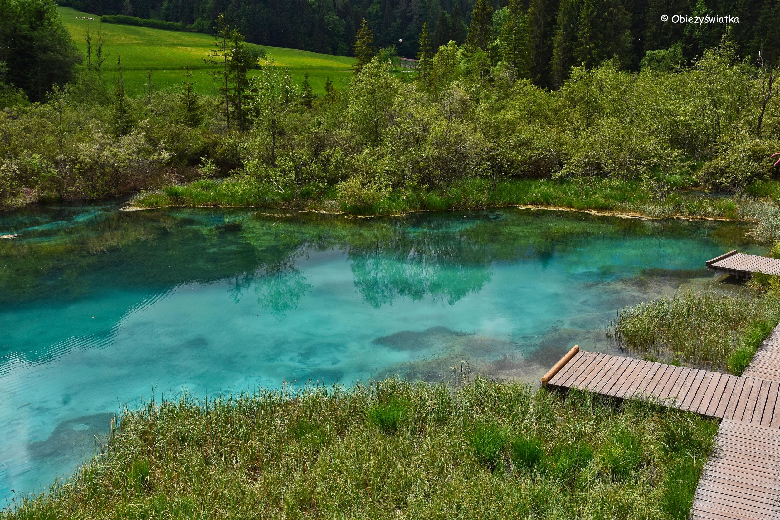 Krystalicznie czysta szmaragdowa woda Jeziora Zelenci, Słowenia
