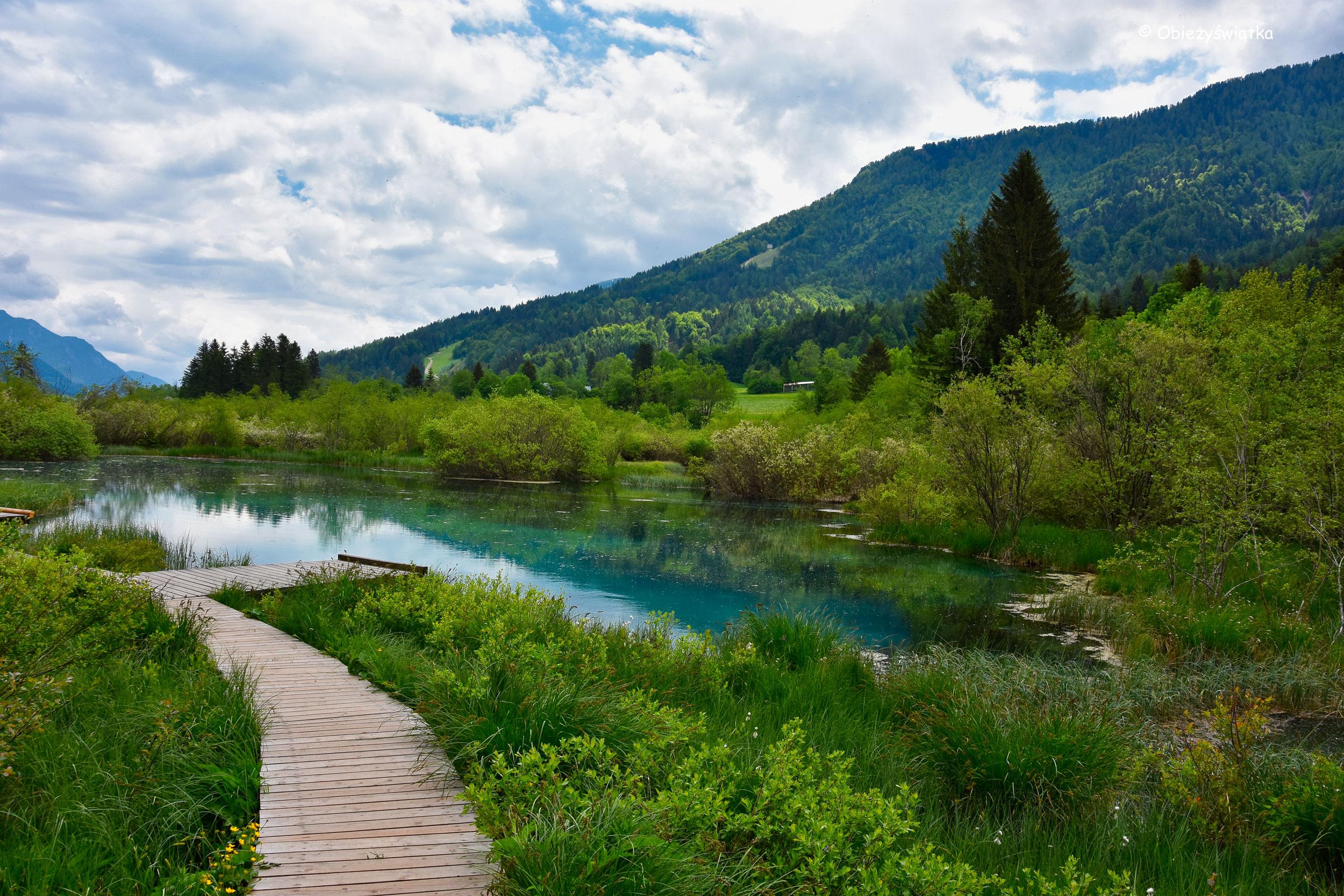 Drewniana kładka i mostek nad Jeziorem Zelenci, Słowenia