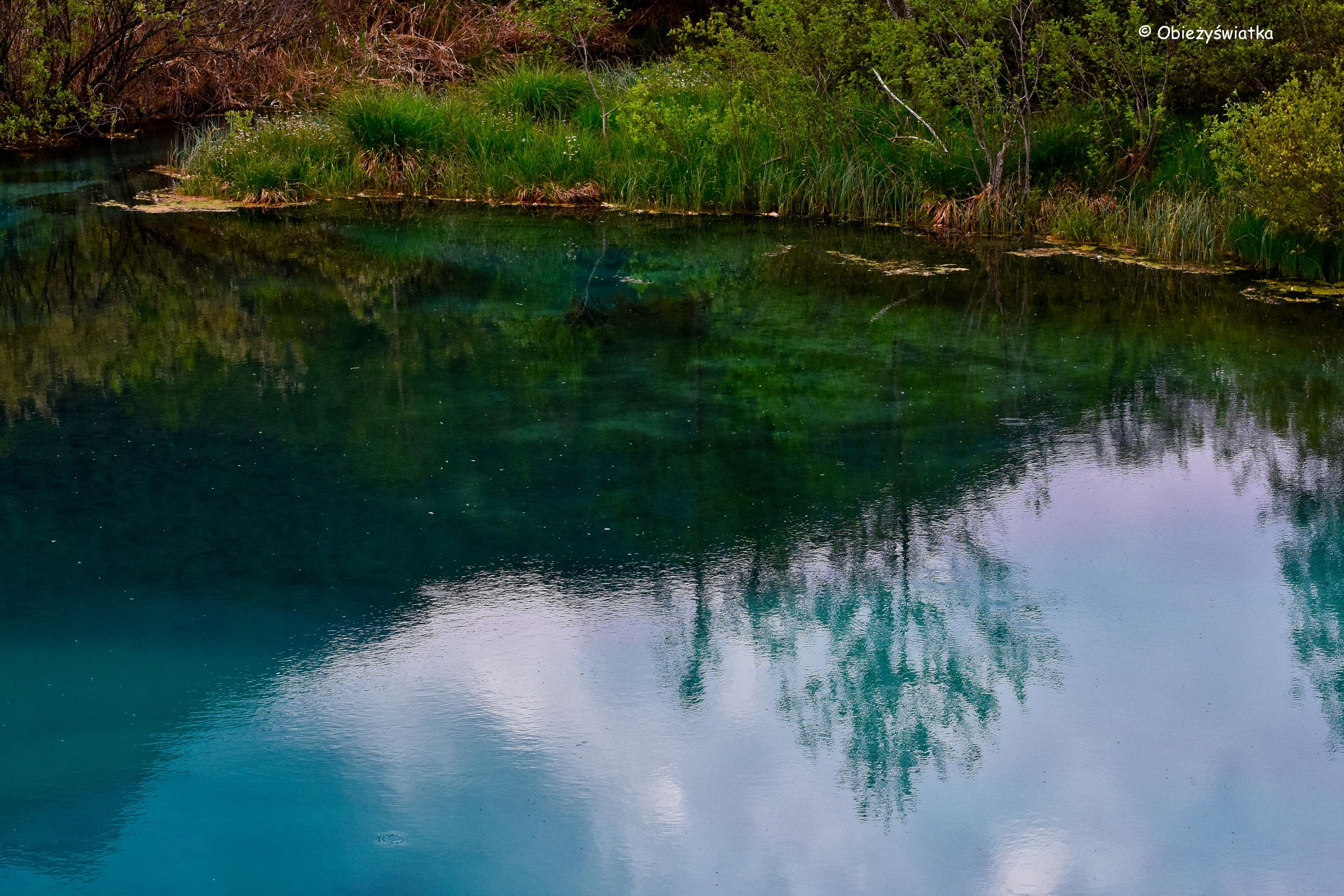 Szmaragdowa tafla Jeziora Zelenci, Słowenia