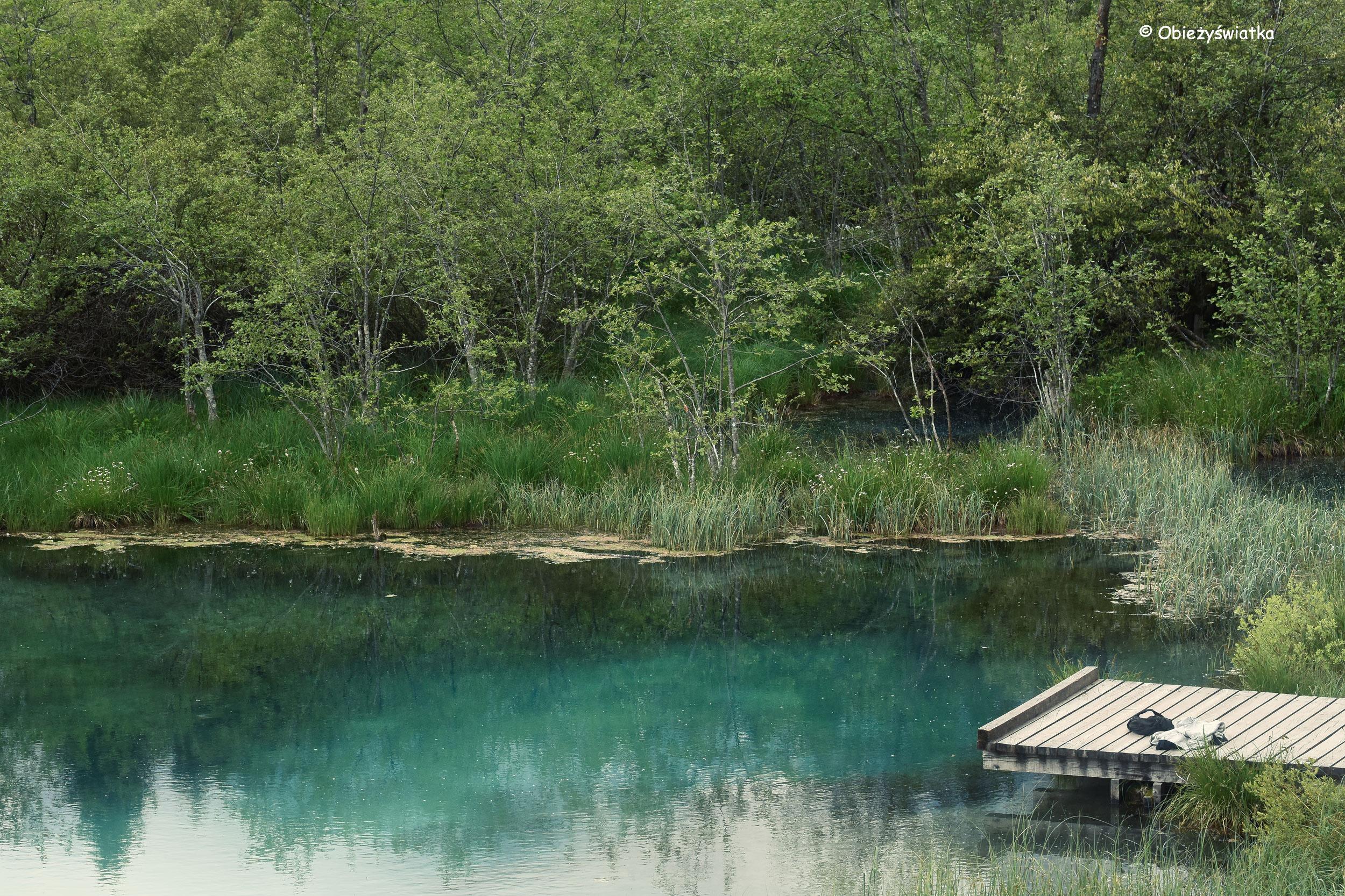 Słoweńskie Jezioro Zelenci