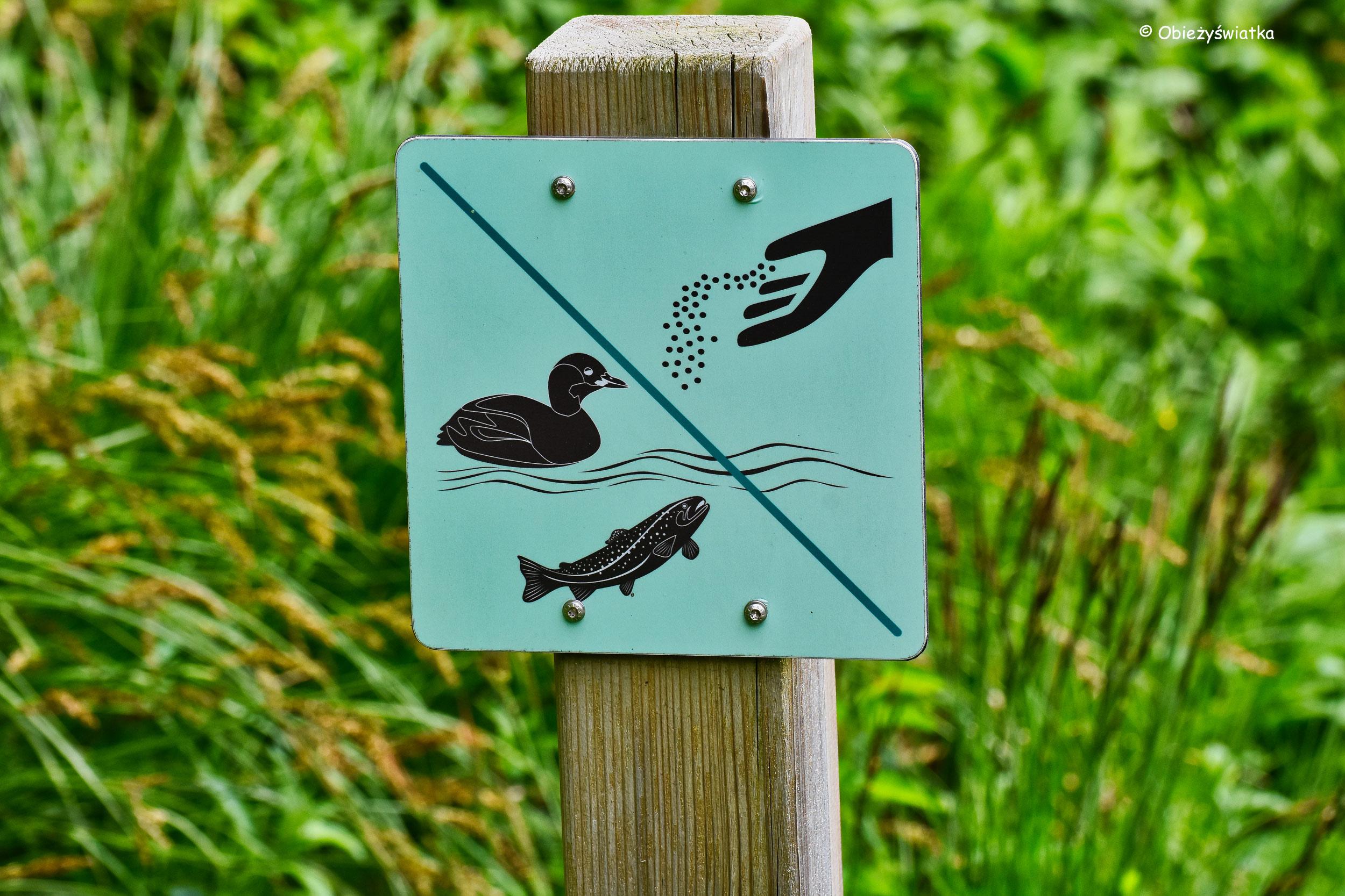 Zakaz karmienia ryb i ptactwa, Jezioro Zelenci, Słowenia
