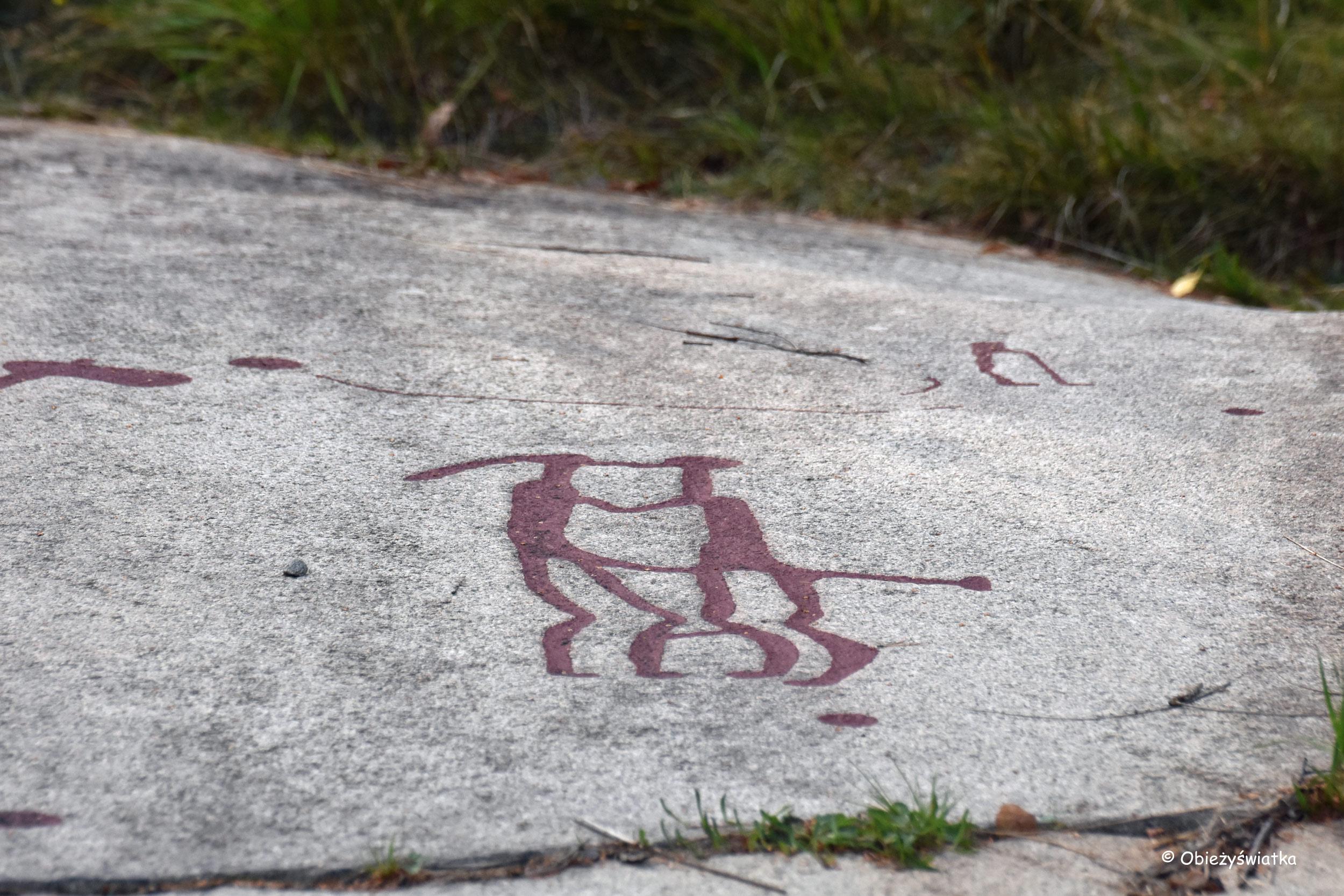 Sztuka naskalna w Tanumshede, Szwecja