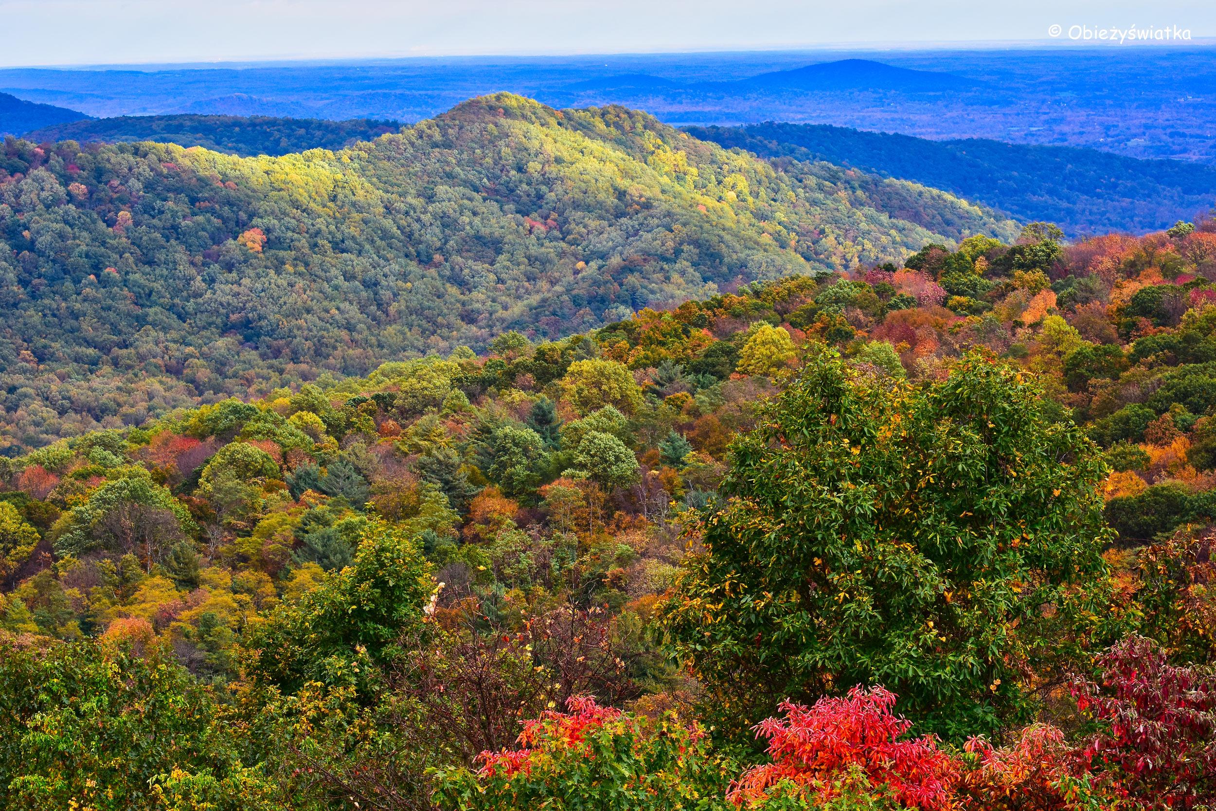 Panorama - Park Narodowy Shenandoah, USA