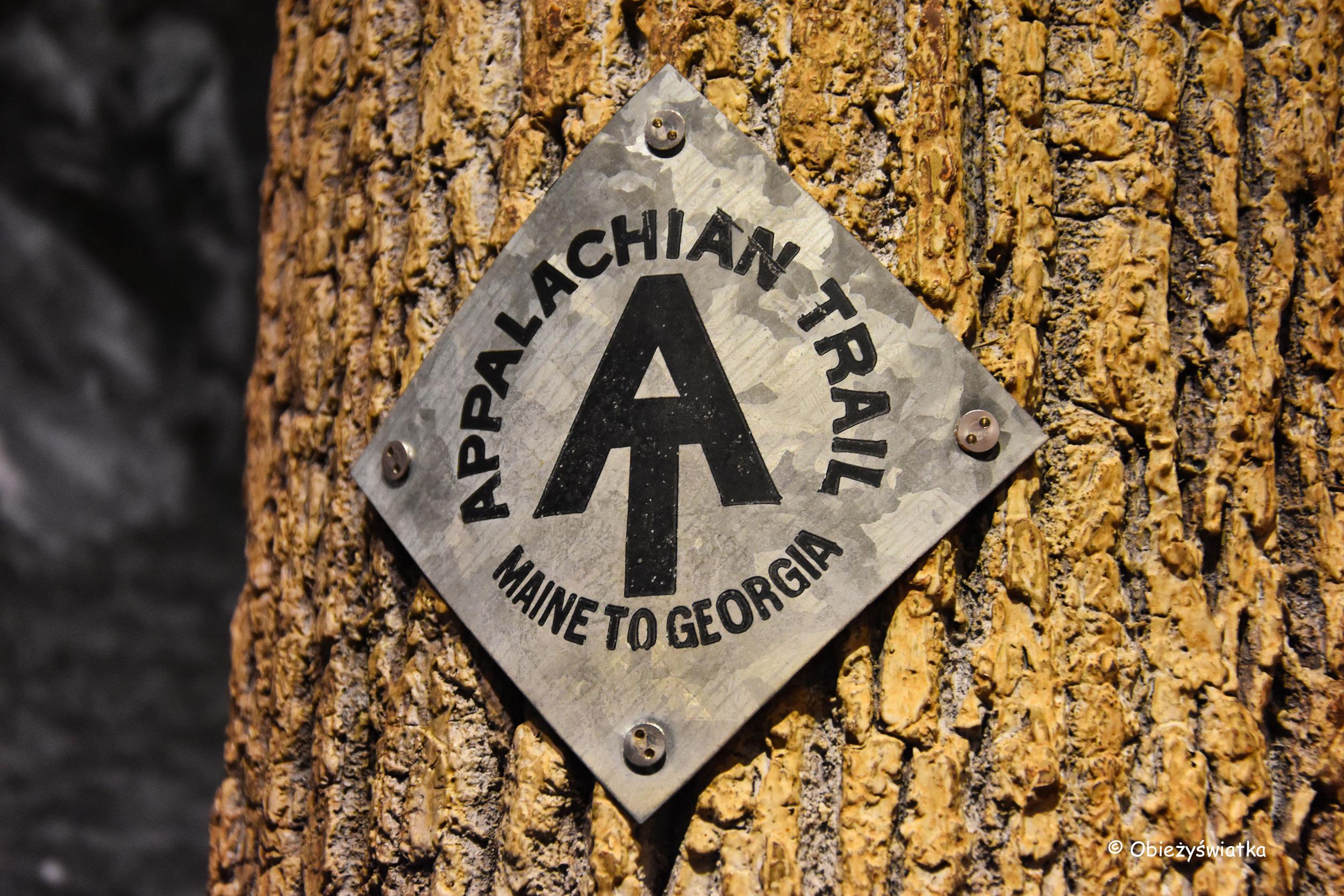Appalachian Trail - Park Narodowy Shenandoah, USA