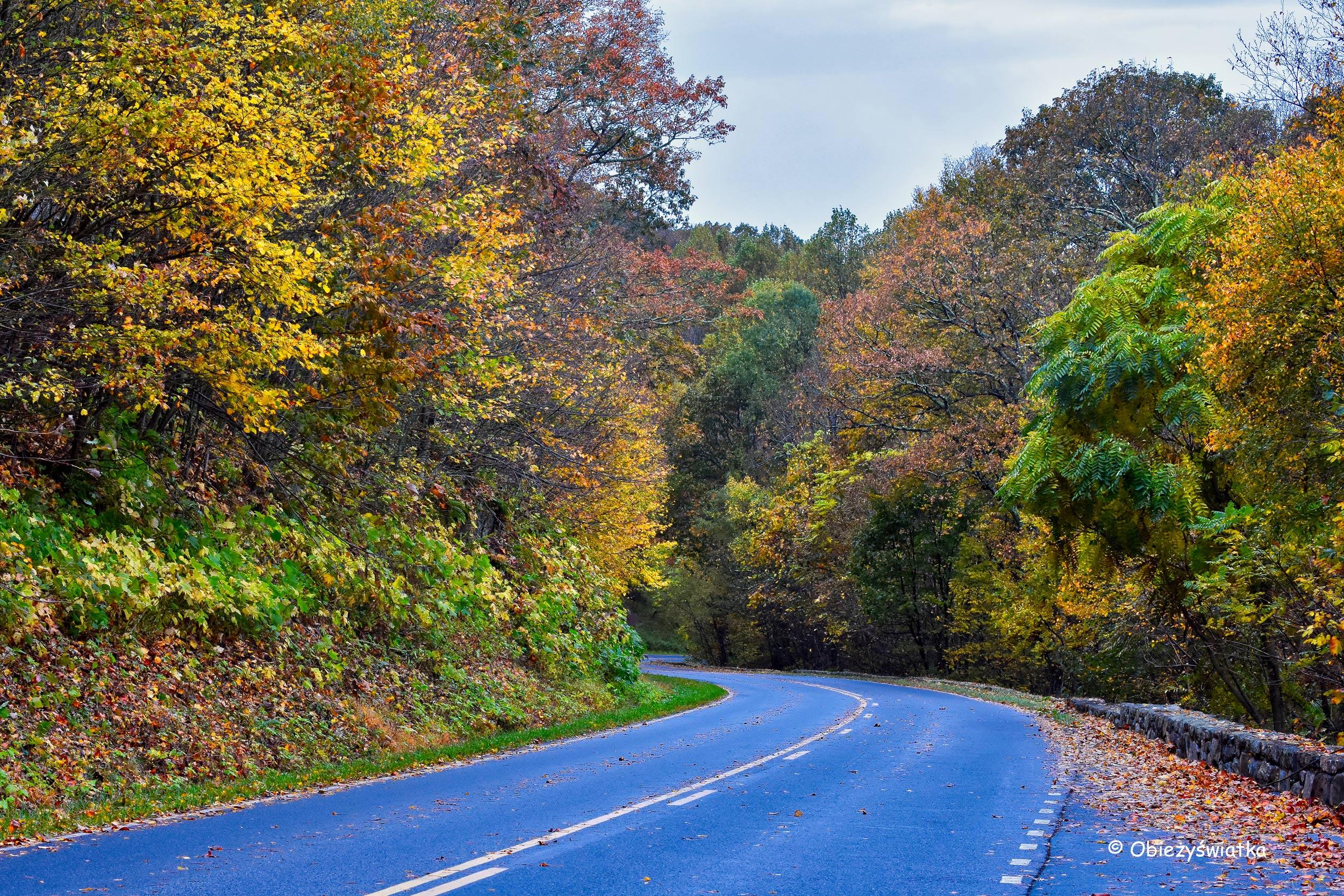 Skyline Drive, Park Narodowy Shenandoah, USA