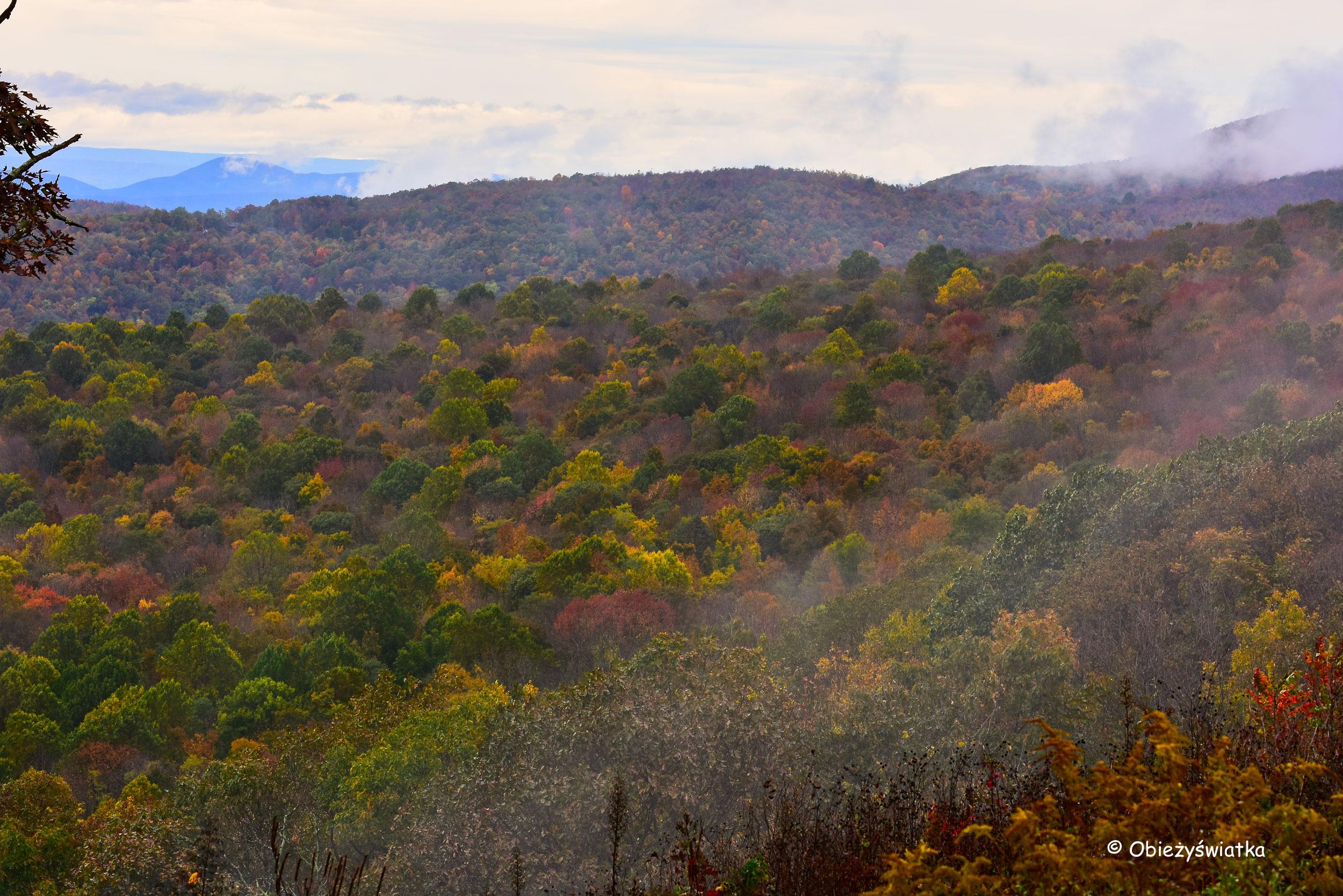 Barwy jesieni, Park Narodowy Shenandoah, USA