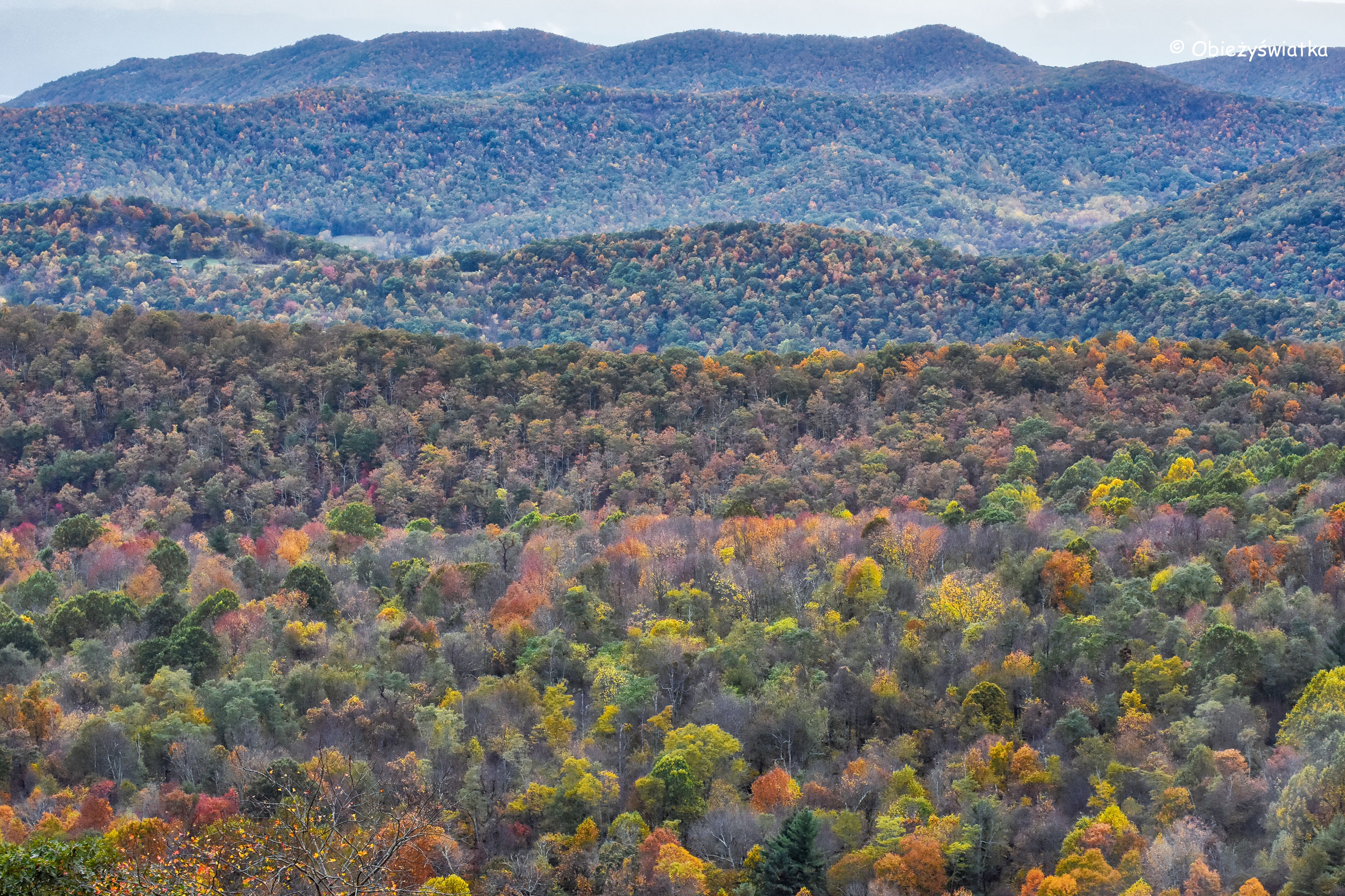 Appalachy jesienią, Park Narodowy Shenandoah, USA