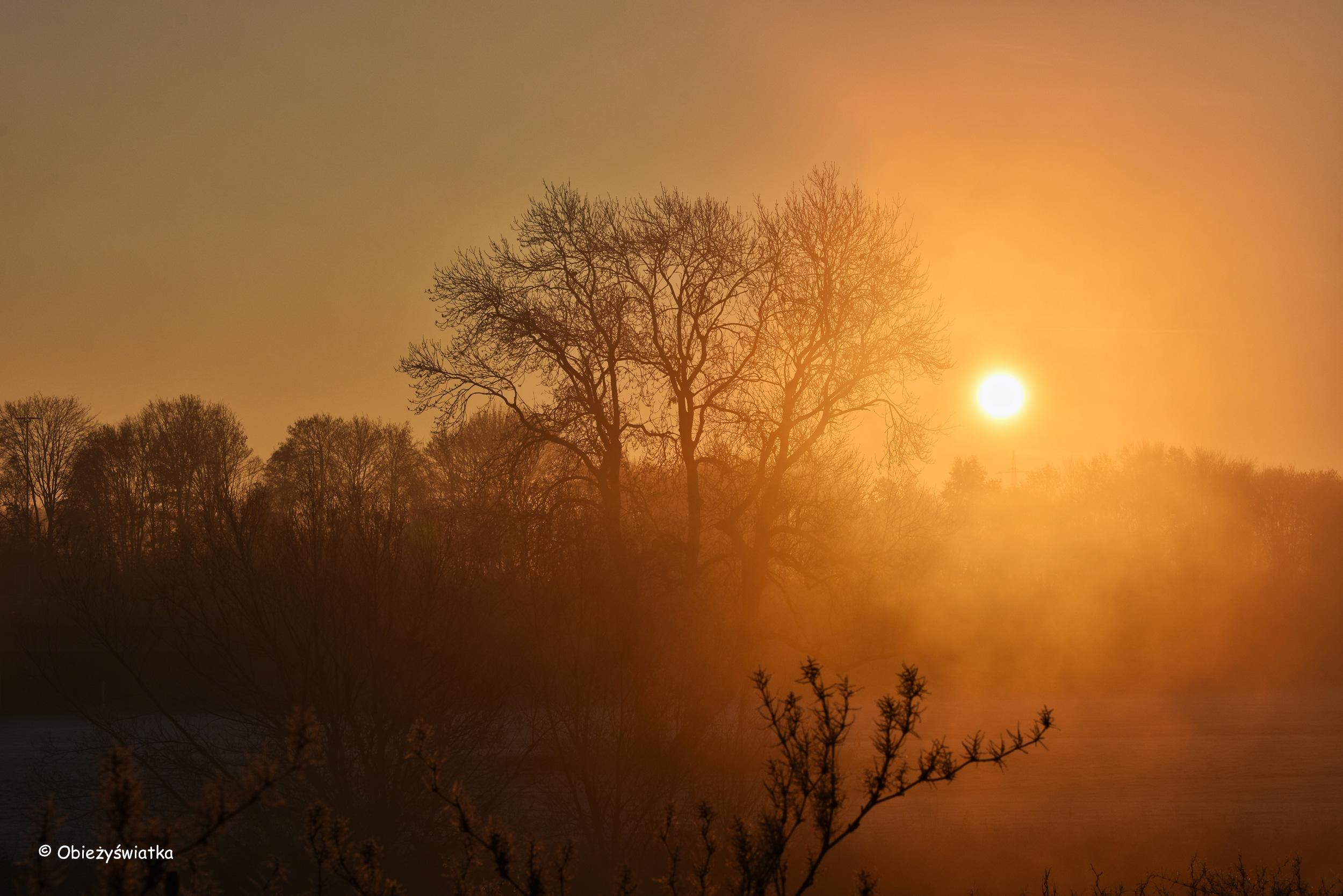 Spektakl natury - wschód słońca w listopadzie
