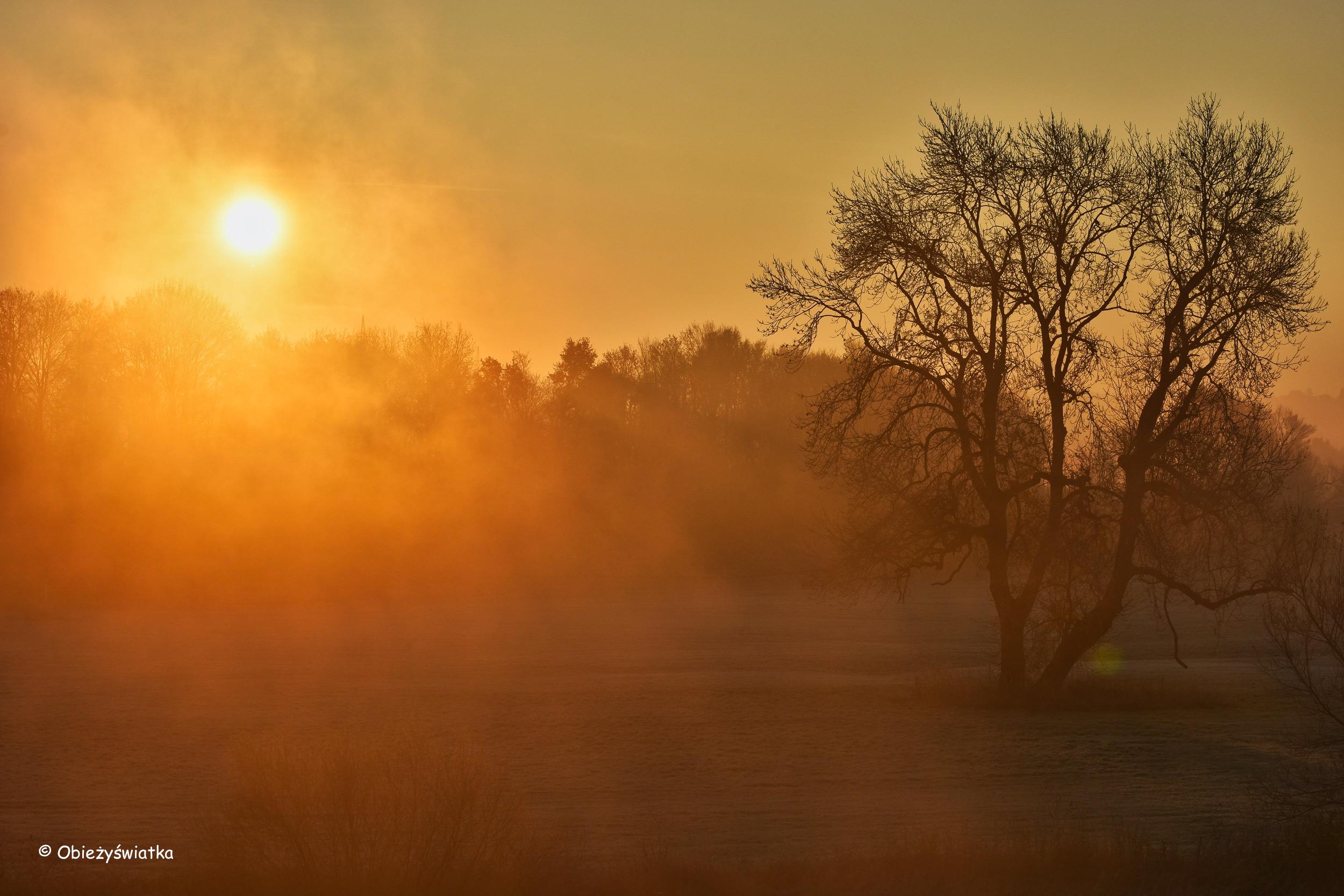 Listopadowy wschód słońca nad niemiecką rzeką Ruhr