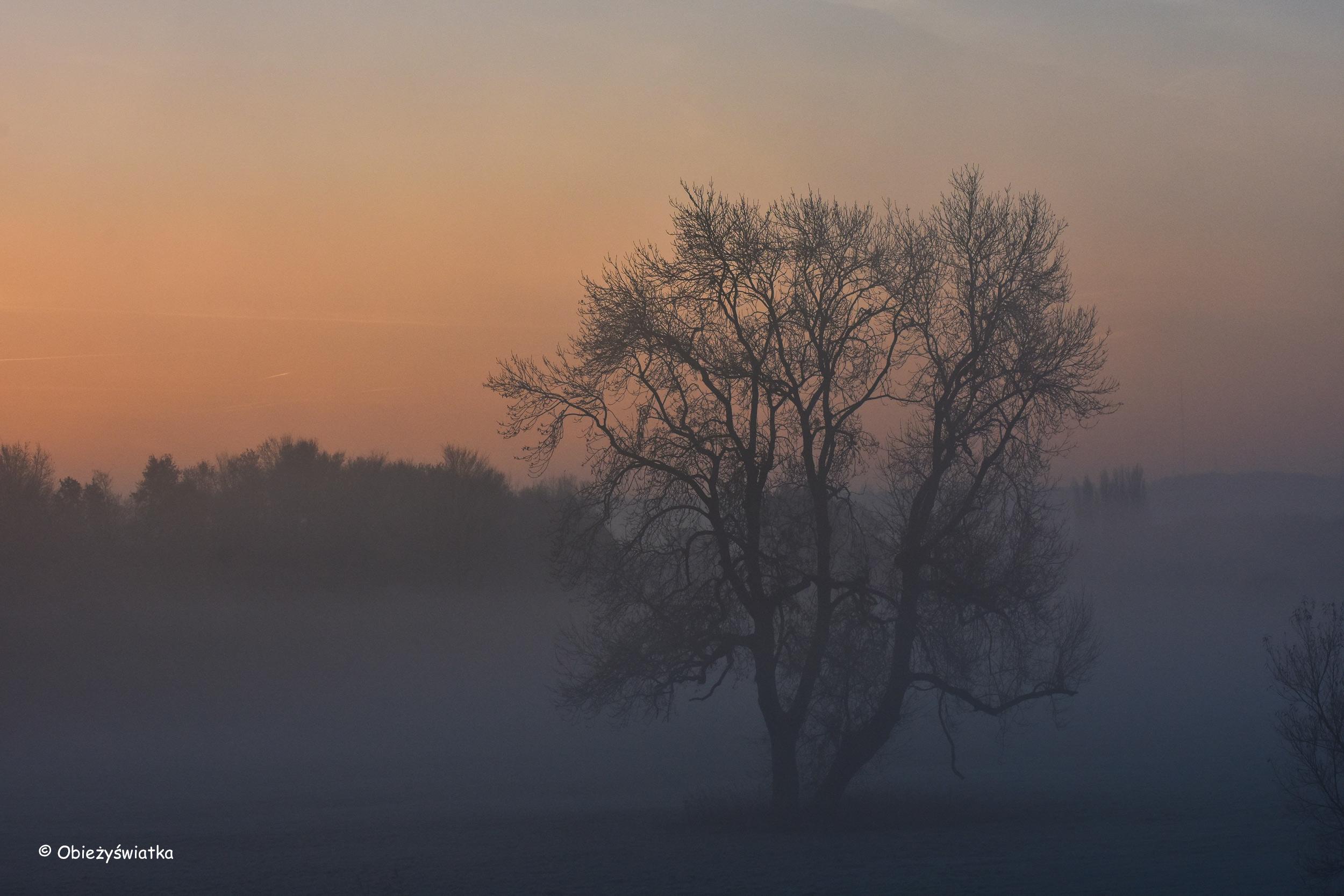 Nad rzeką Ruhr w listopadowy poranek
