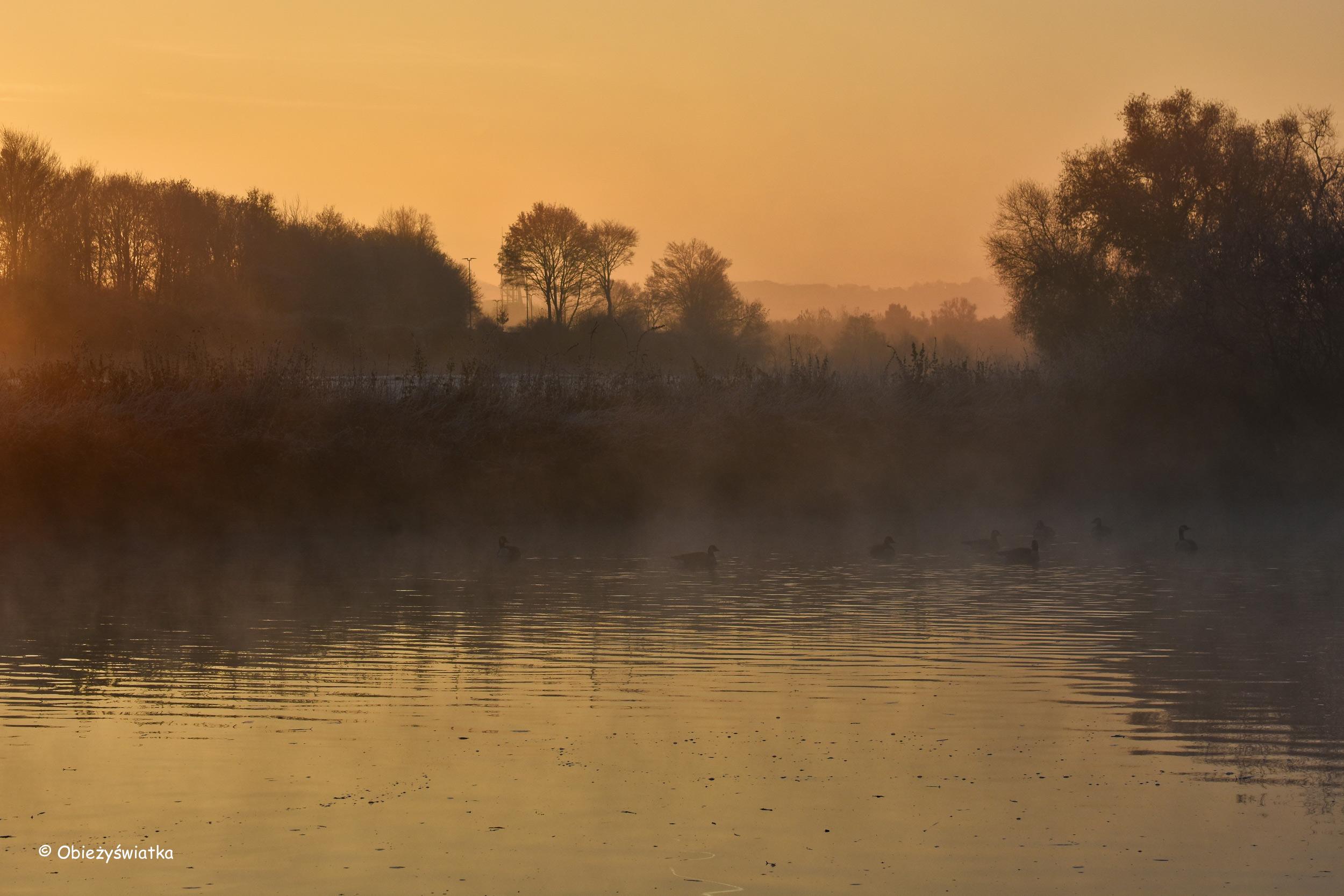 Rzeka Ruhr o świcie