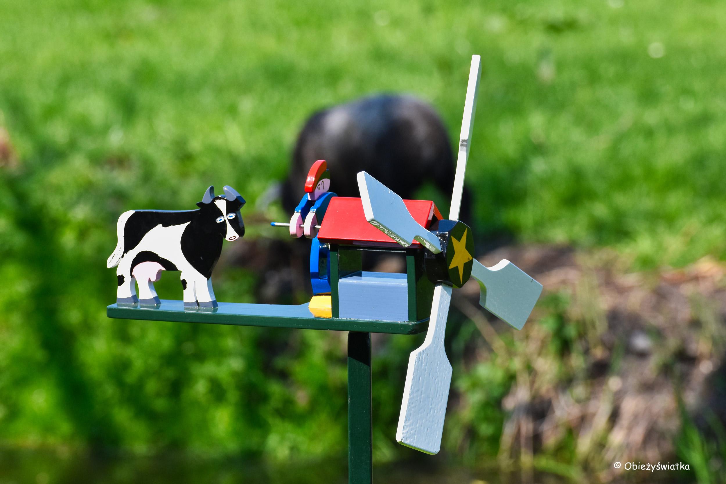 Wiatrak i krowa :)