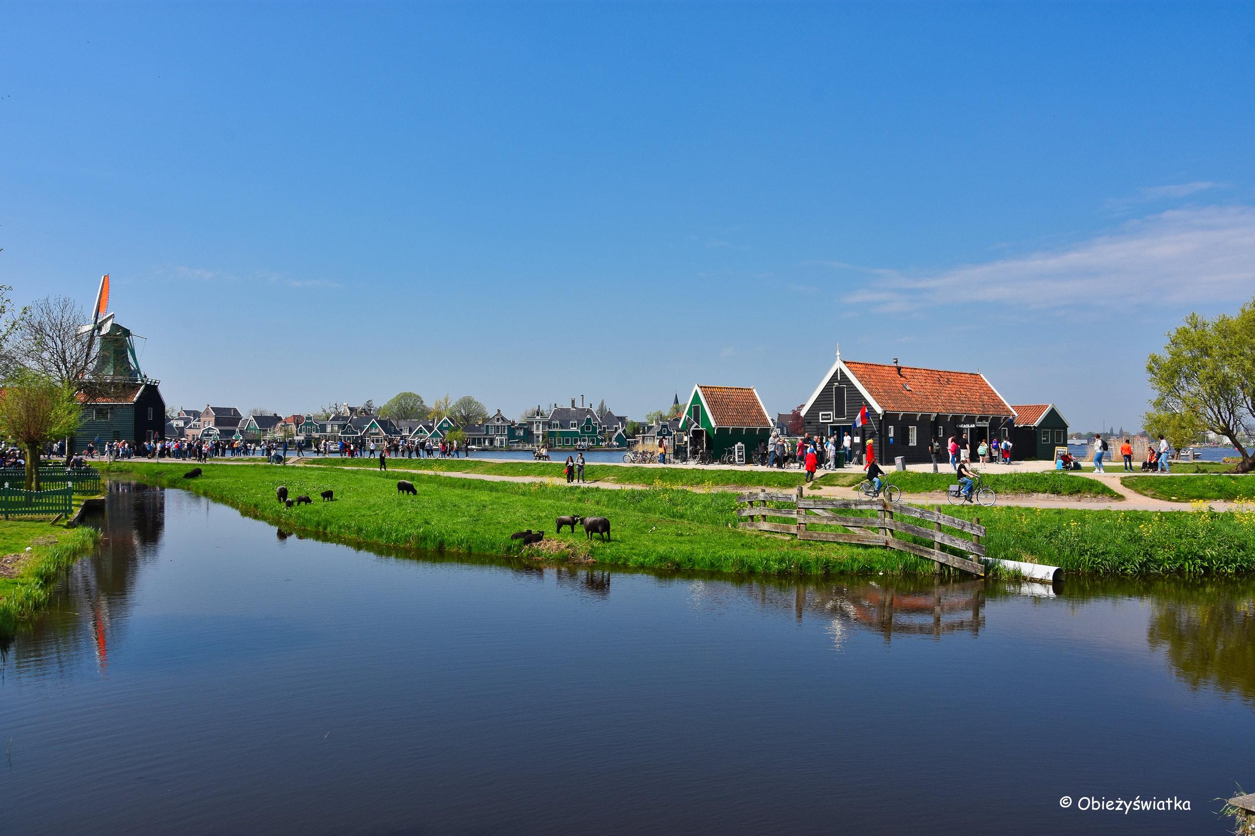 Holenderska wioska, Zaanse Schans