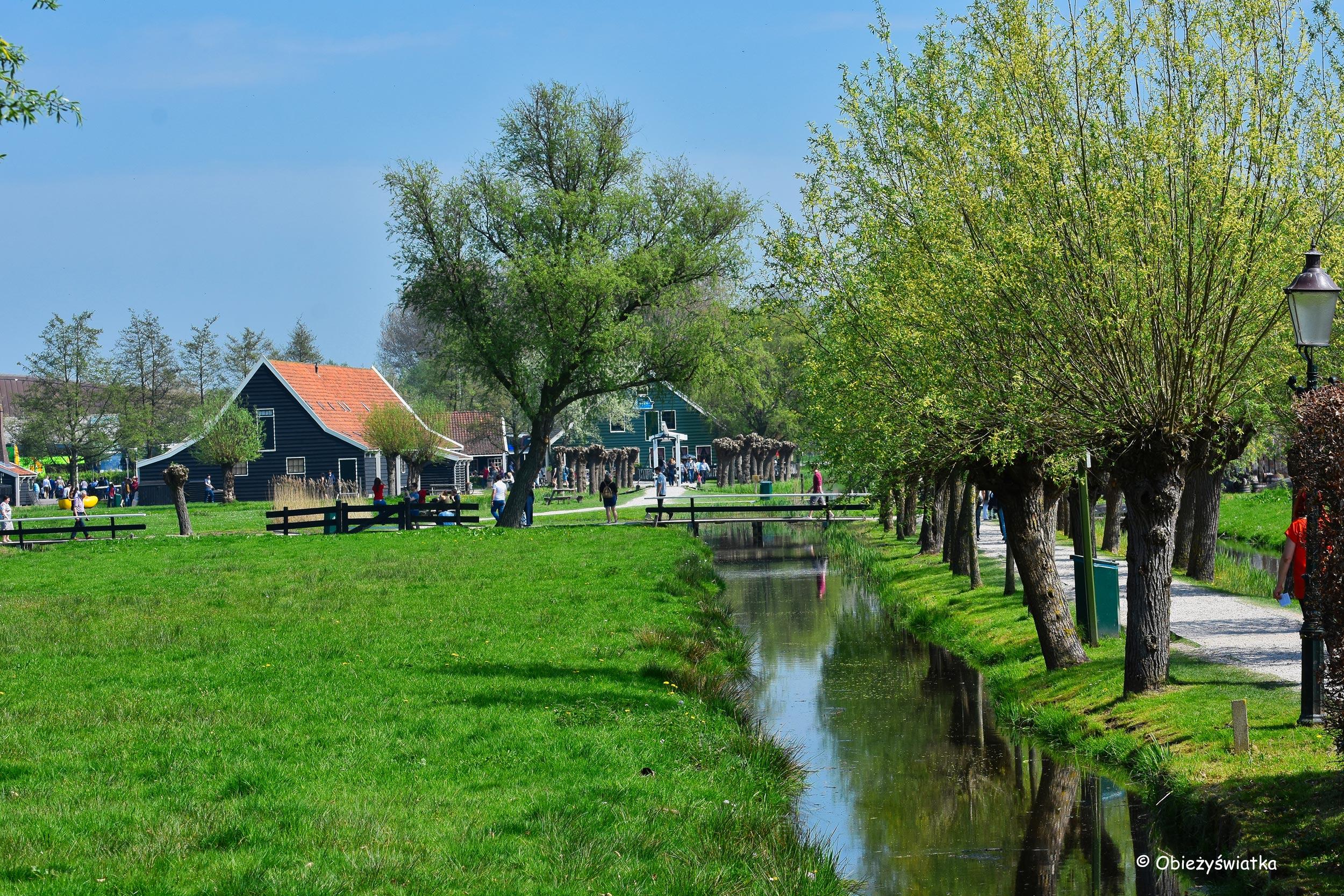 Wiosna w skansenie Zaanse Schans