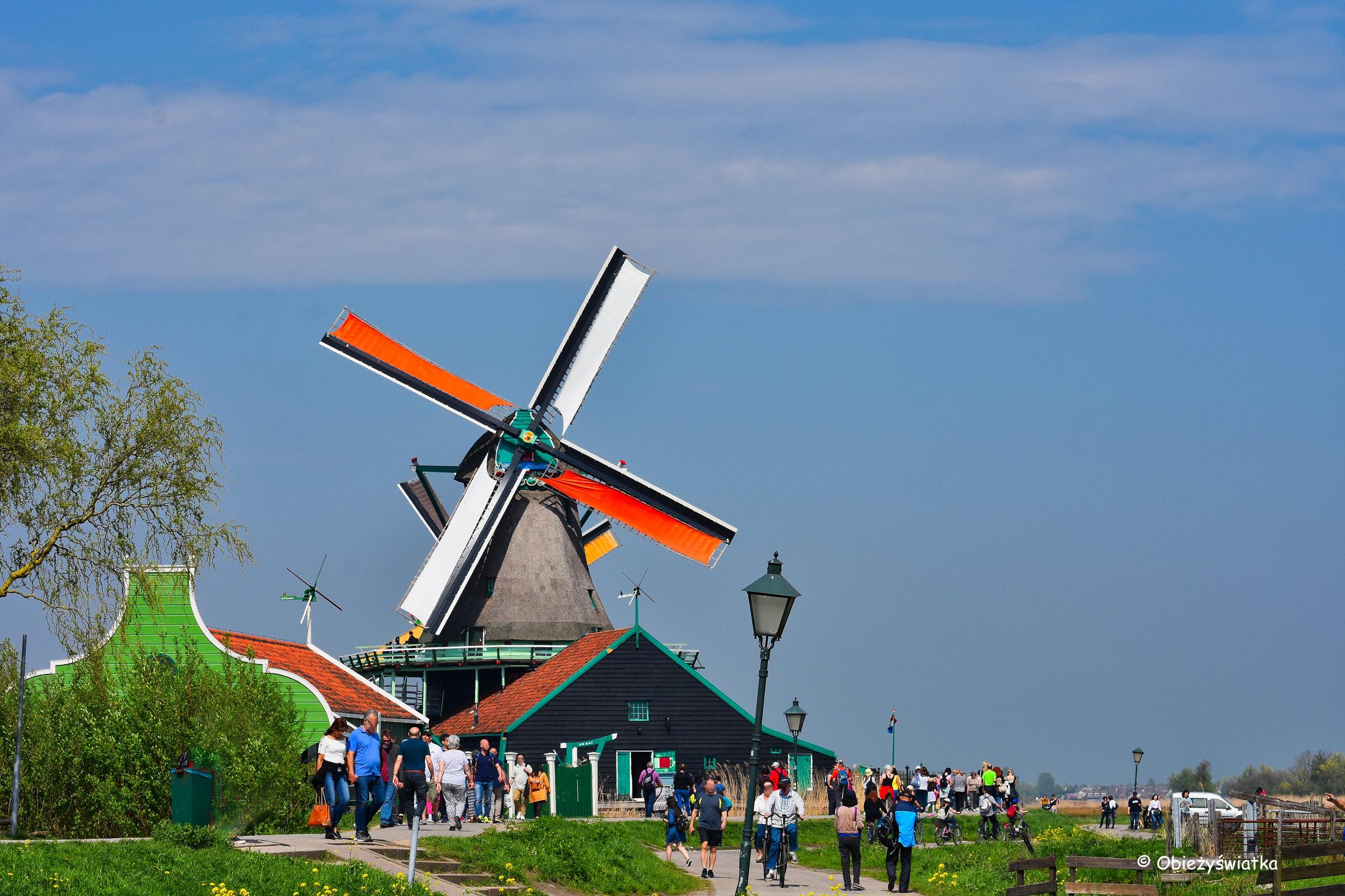 Młyn De Kat, Zaanse Schans, Holandia