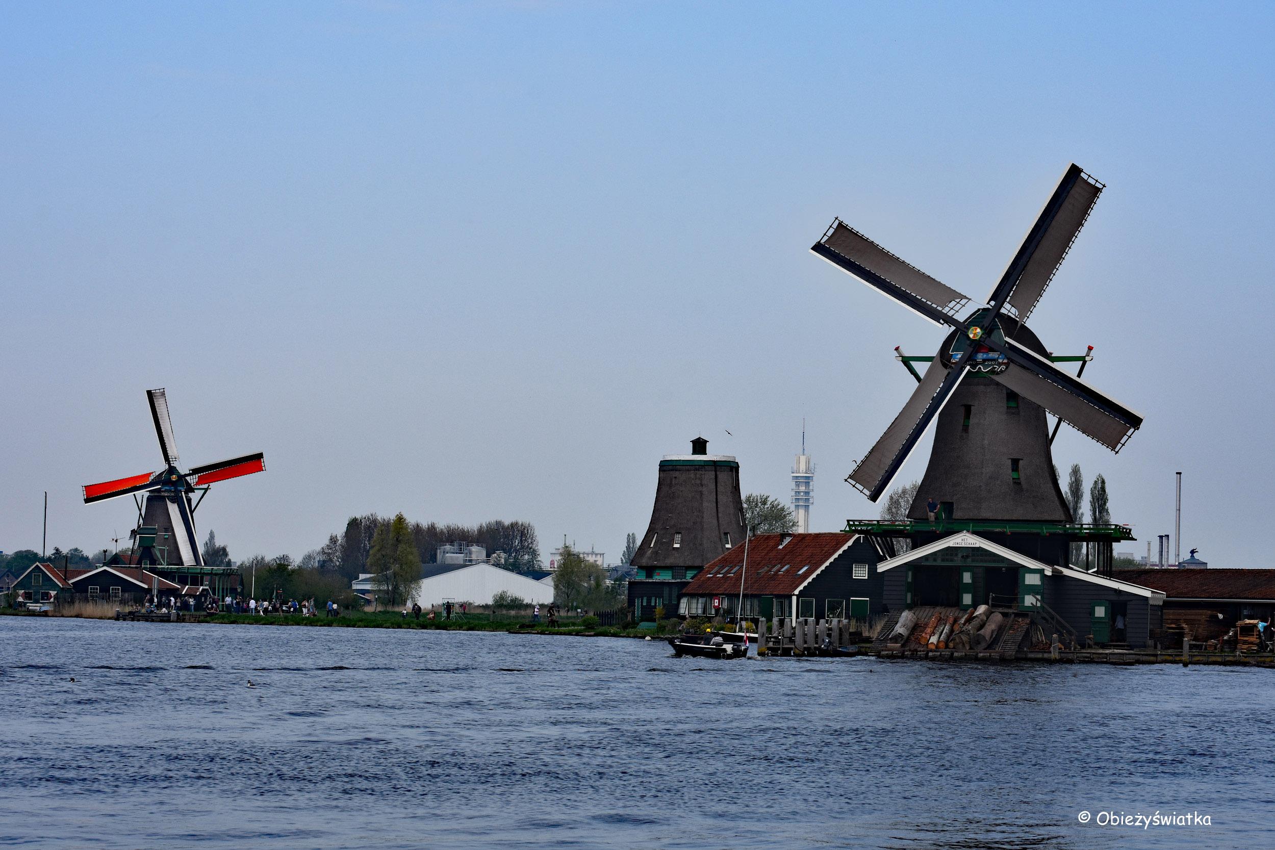 Zaanse Schans, Holandia