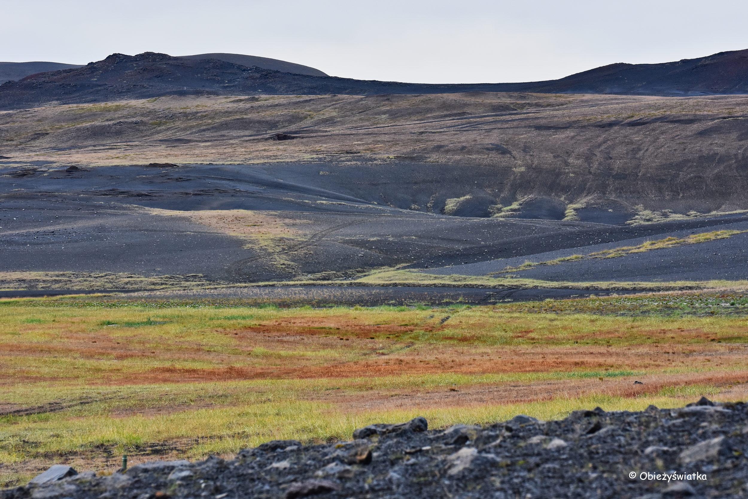 Okolice wulkanu Hverfjall, Islandia