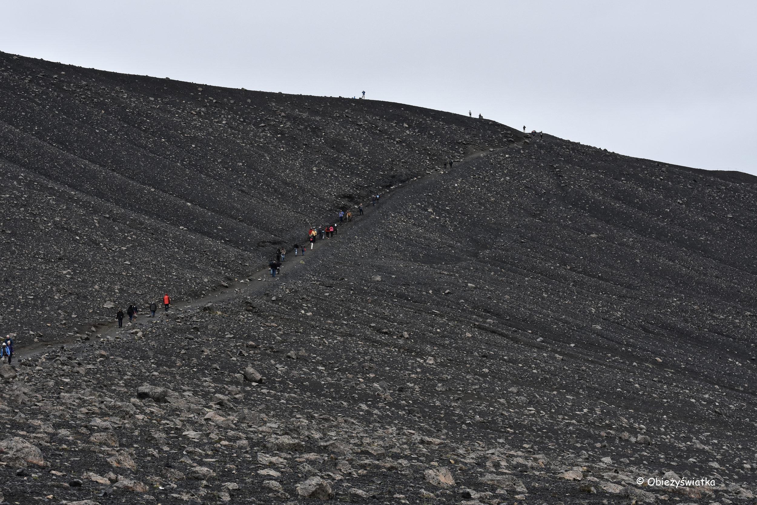 W drodze na wulkan Hverfjall, Islandia