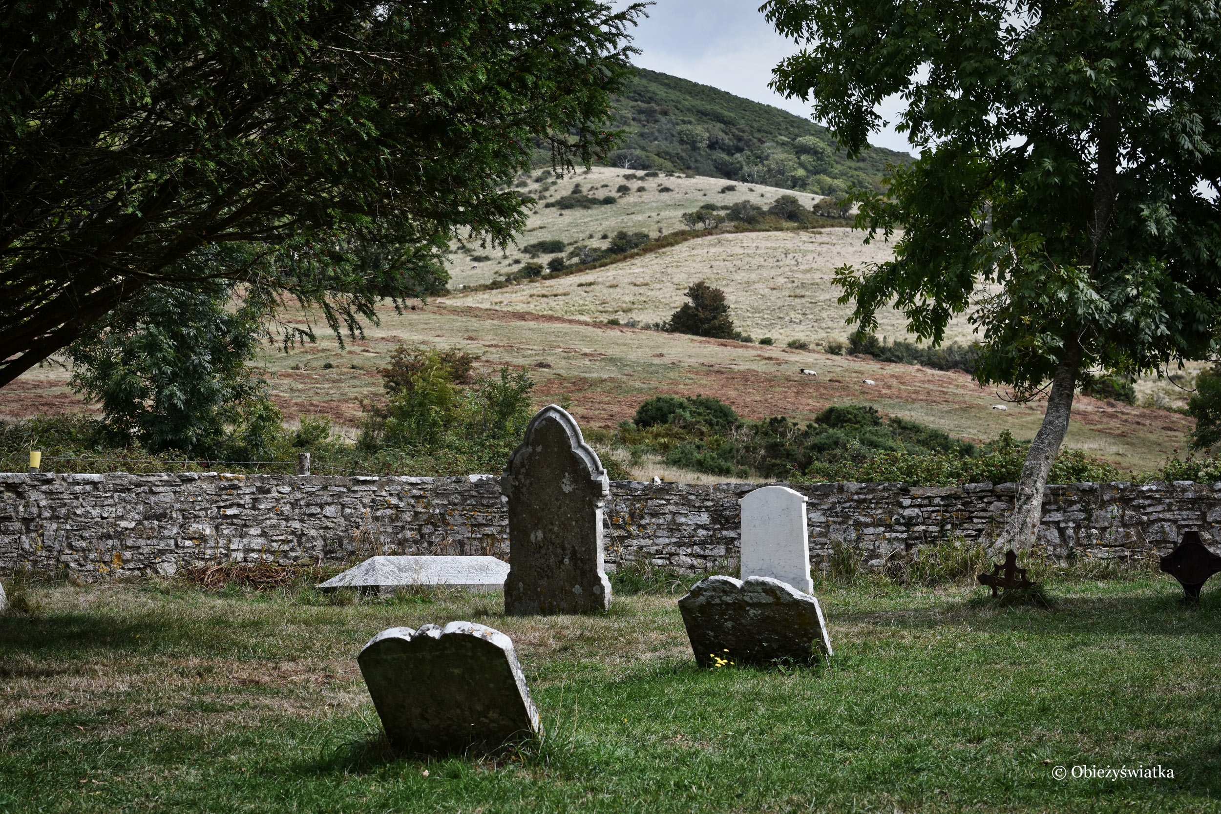 Tyneham - przykościelny cmentarz