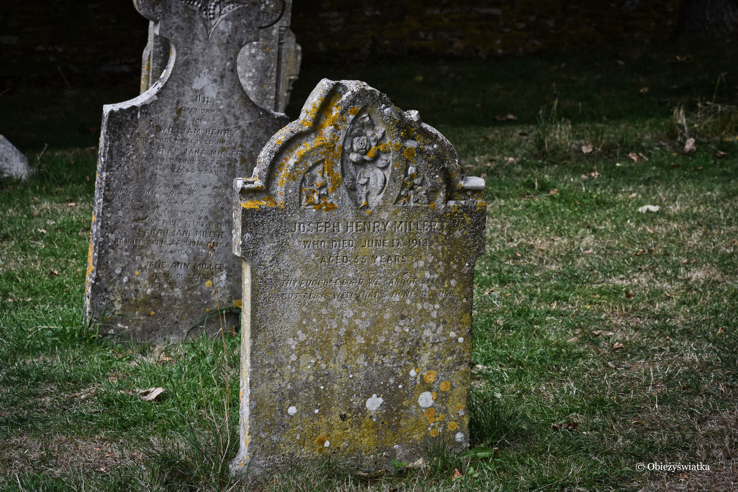 Nagrobki na przykościelnym cmentarzu, Tyneham, UK