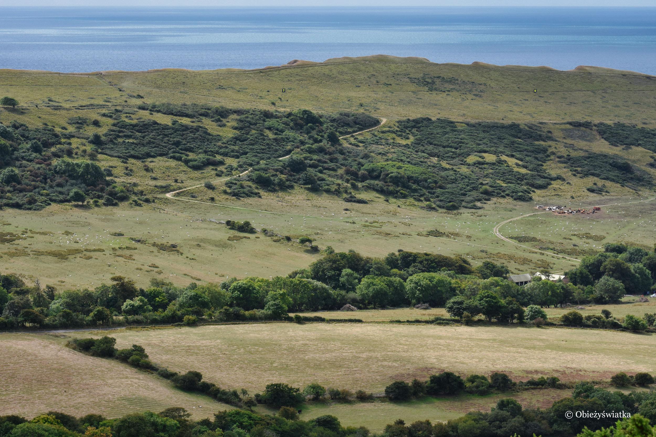Nadmorski krajobraz w hrabstwie Dorset