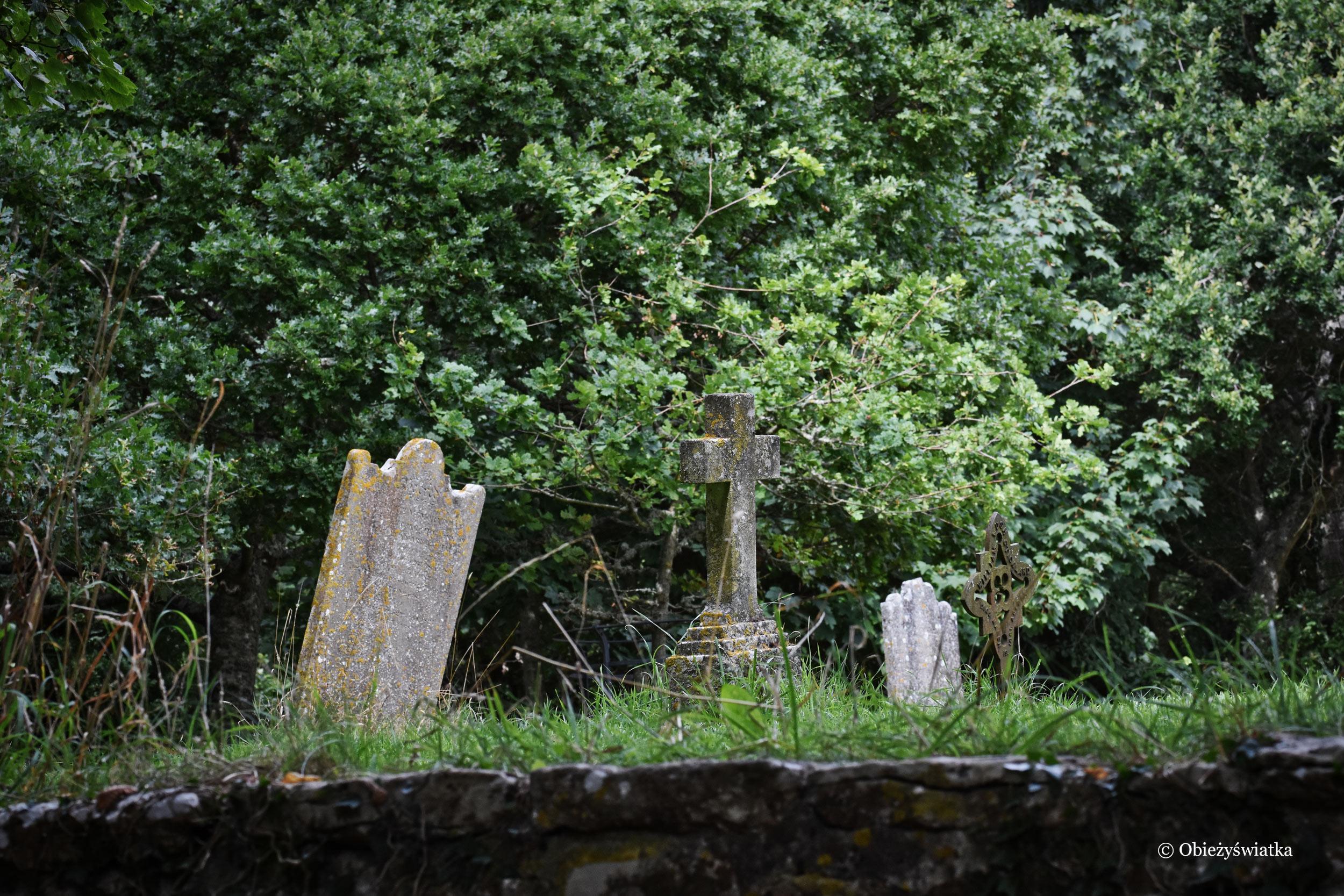 Cmentarz w opuszczonej wiosce, Tyneham