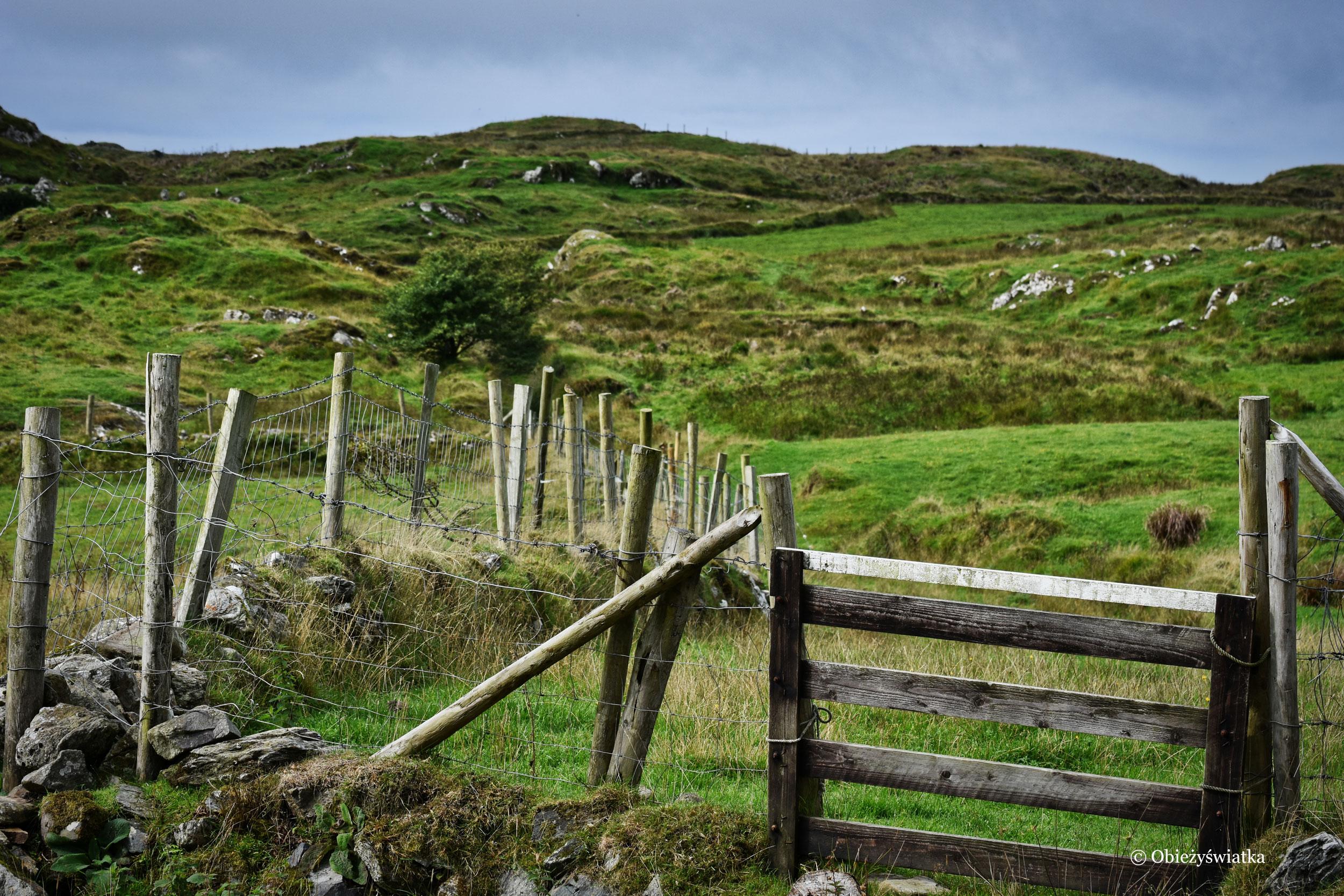 Na szlaku wokół Killybegs, Irlandia