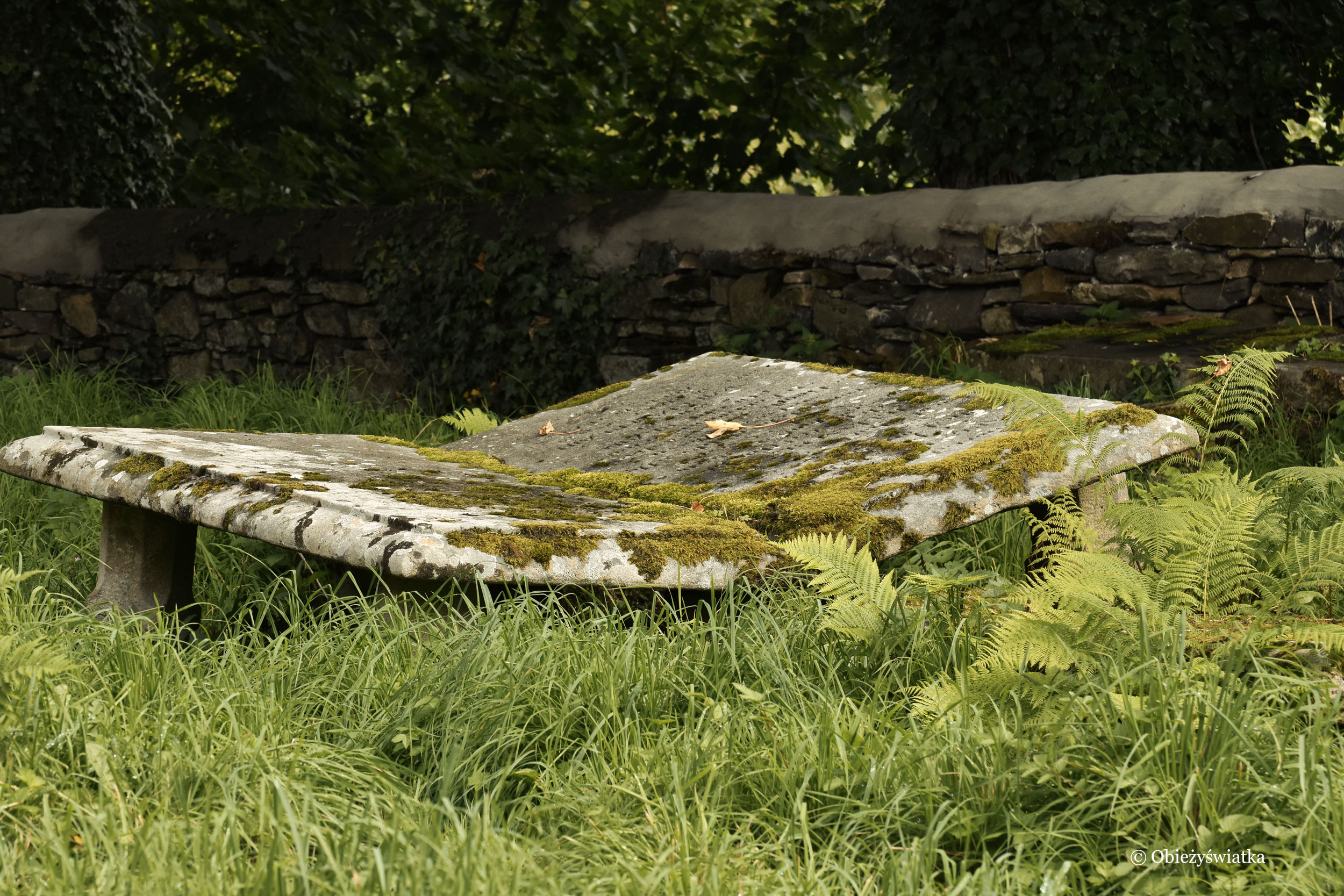Stary, zabytkowy nagrobek, Killybegs, Irlandia