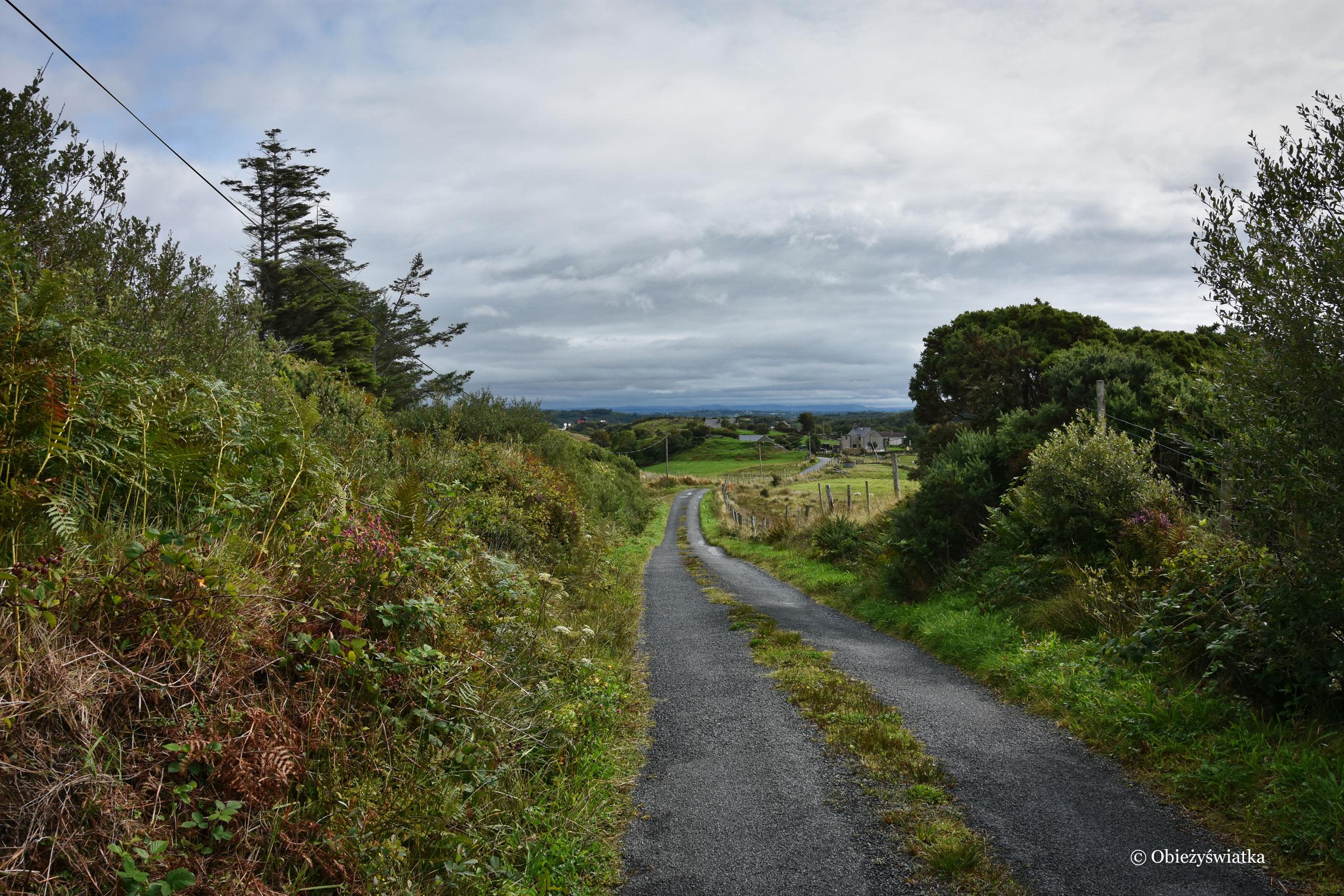 Wędrując wokół Killybegs, Irlandia