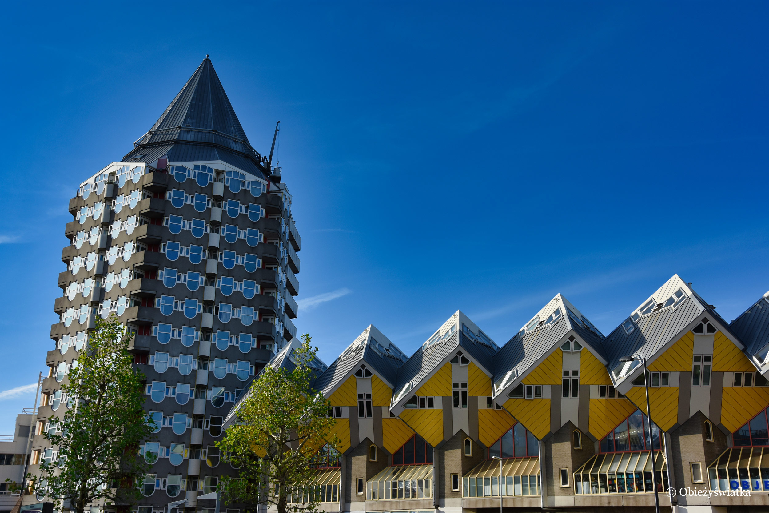Żółte kostki mieszkalne :) - Rotterdam, Holandia