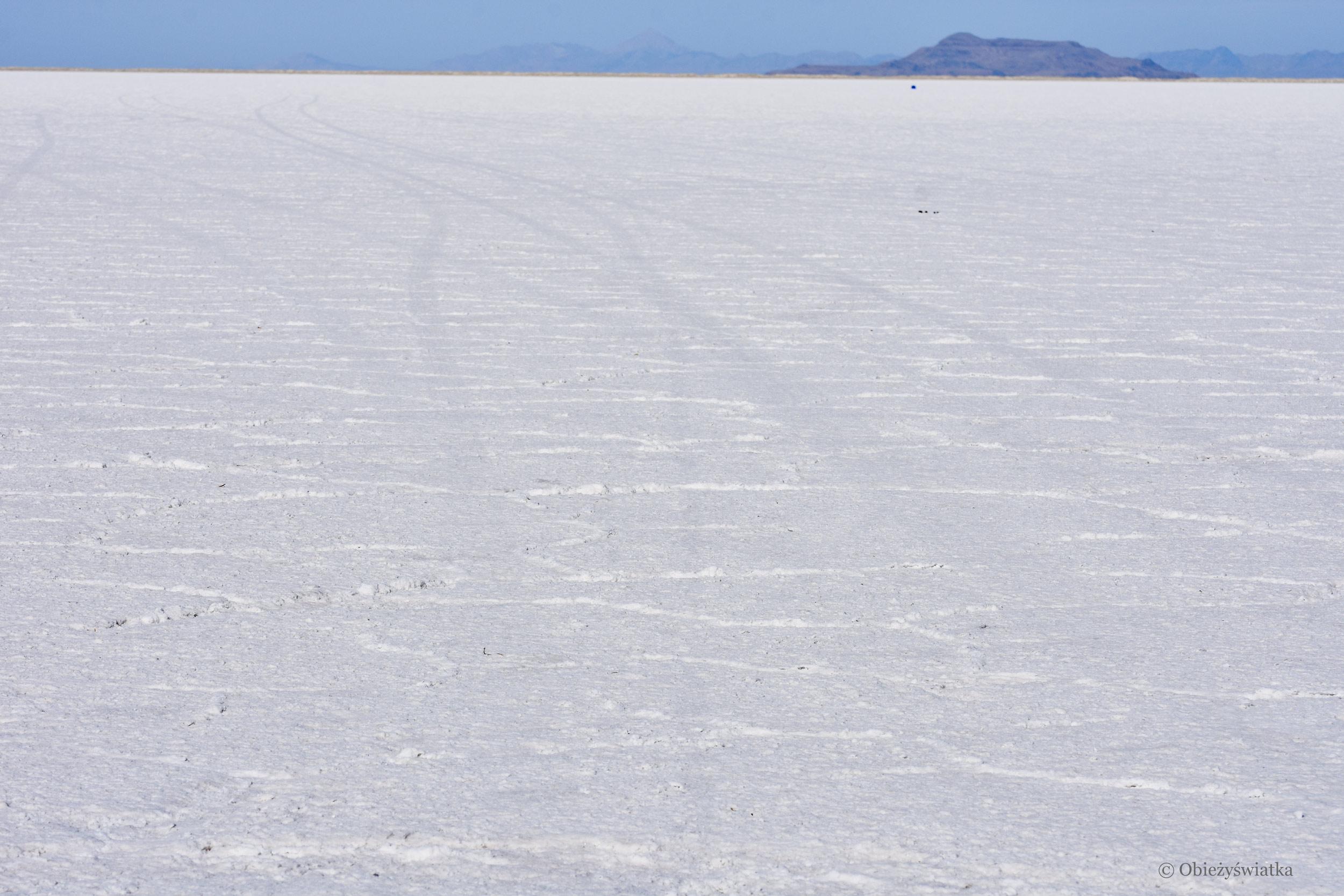 Na całej połaci ... sól, Great Salt Lake Desert