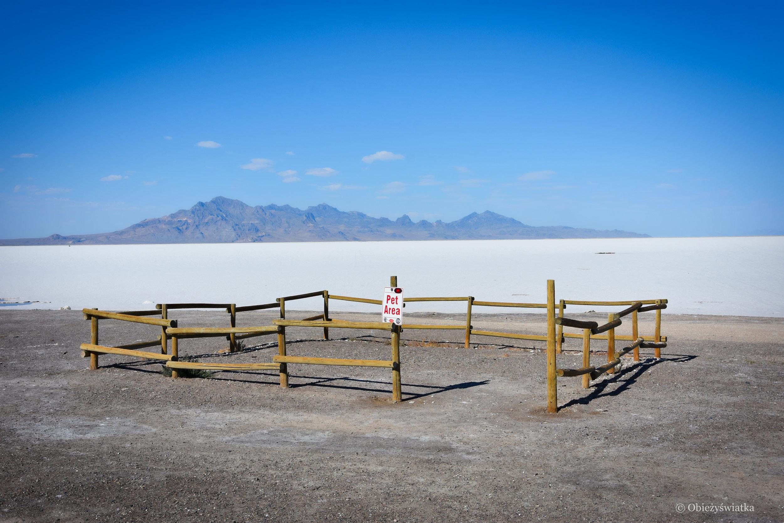 Z myślą o czworonogach ... - Great Salt Lake Desert
