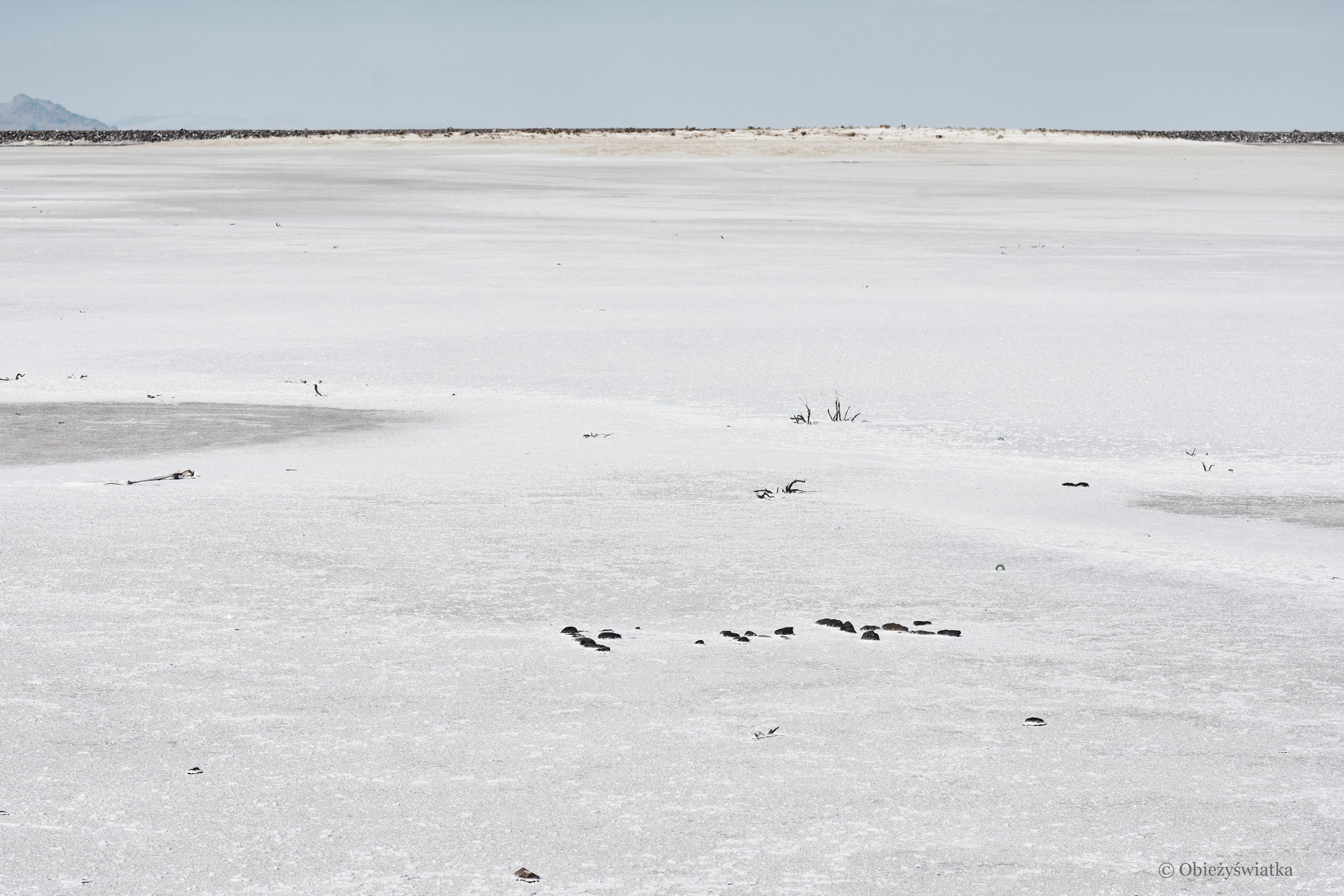 Biało i słono, Great Salt Lake Desert