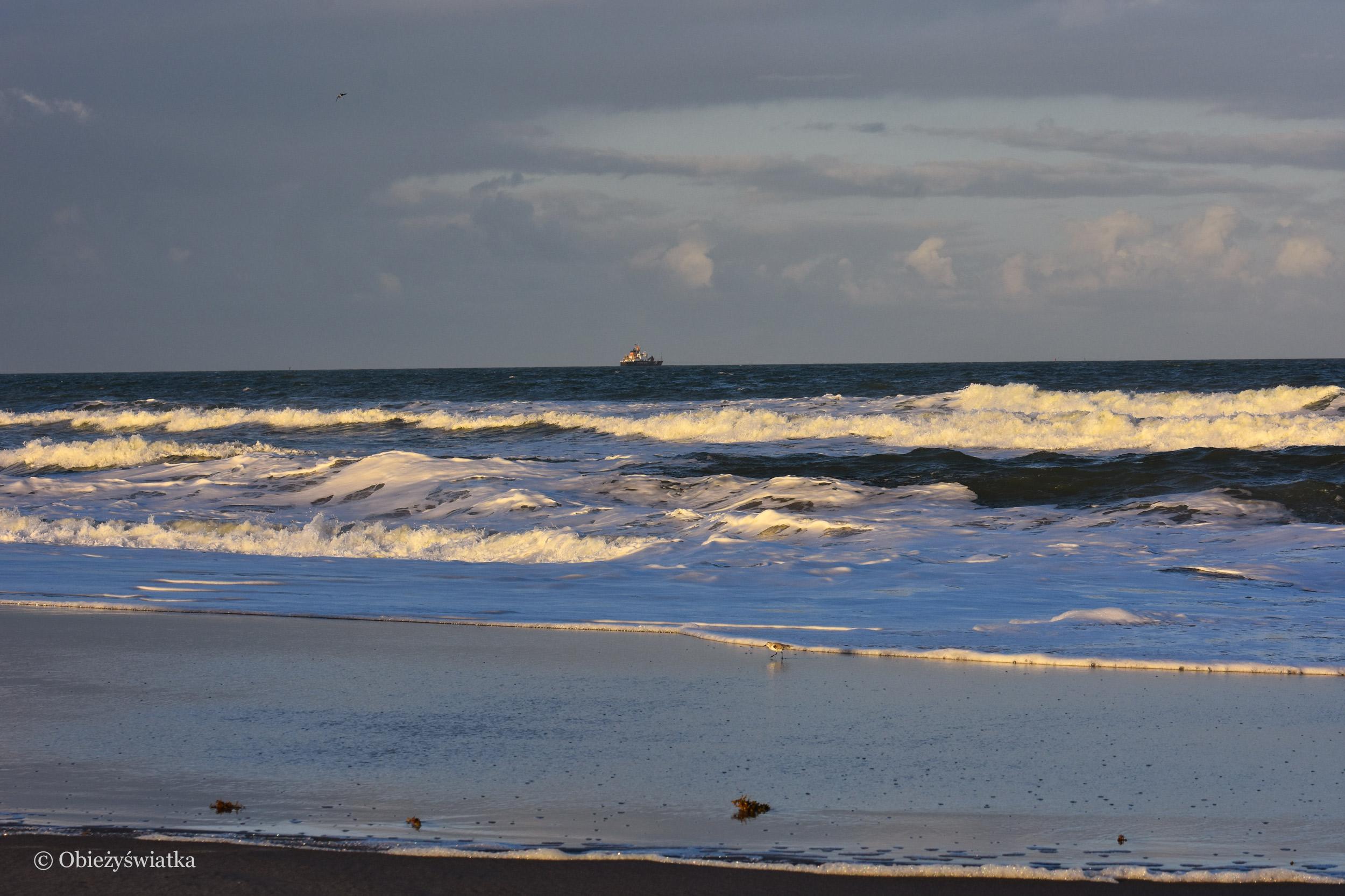 Ocean, Cocoa Beach, Floryda