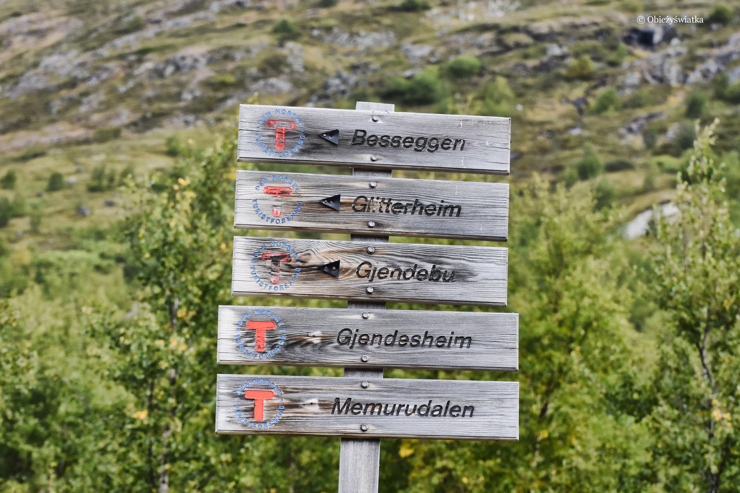 Szyld na szlaku Besseggen, Norwegia