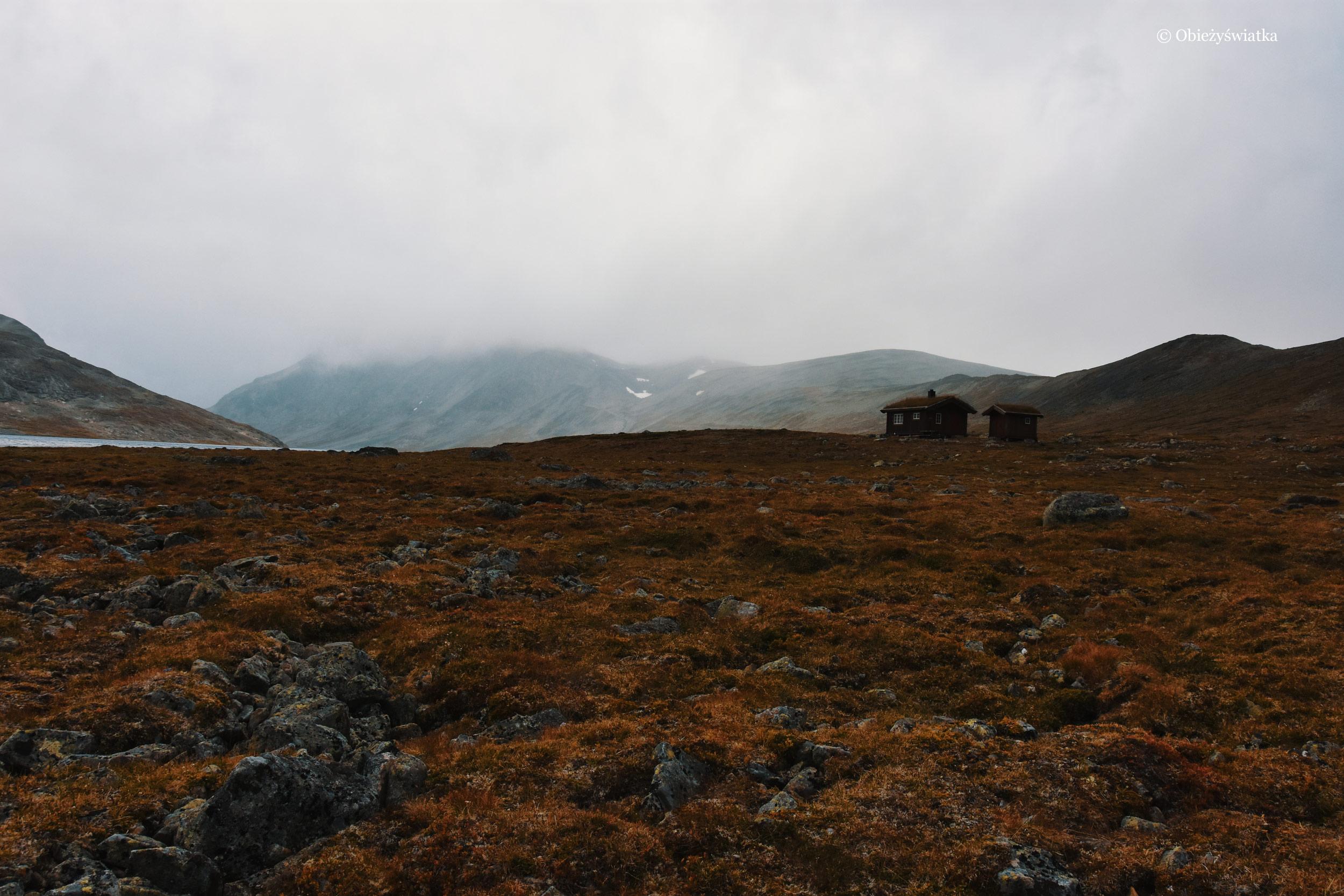 Mgła, mech, wełniani, cisza i pusta - Norwegia!