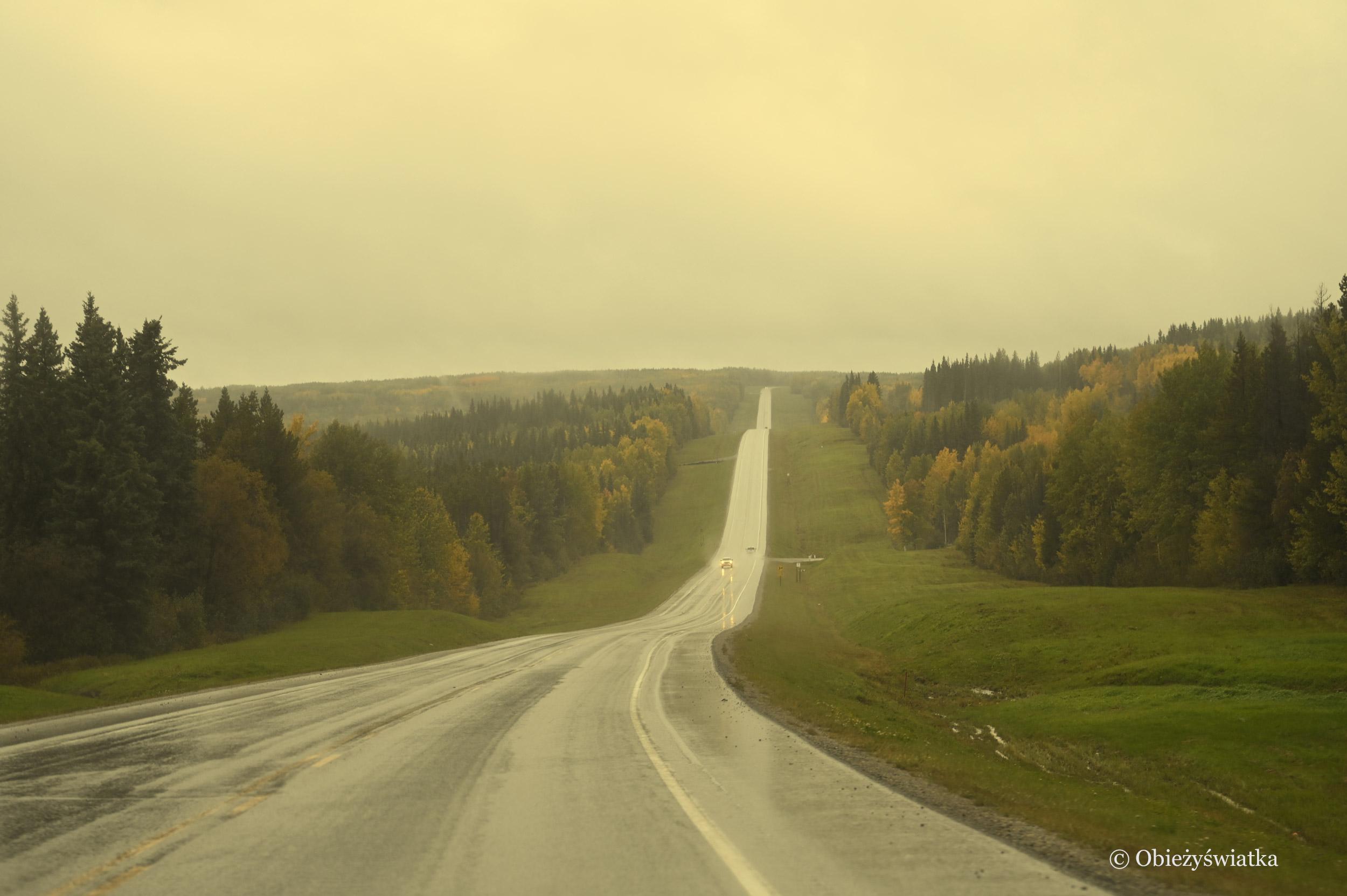 Deszczowo i mglisto - Alaska Highway, Kanada