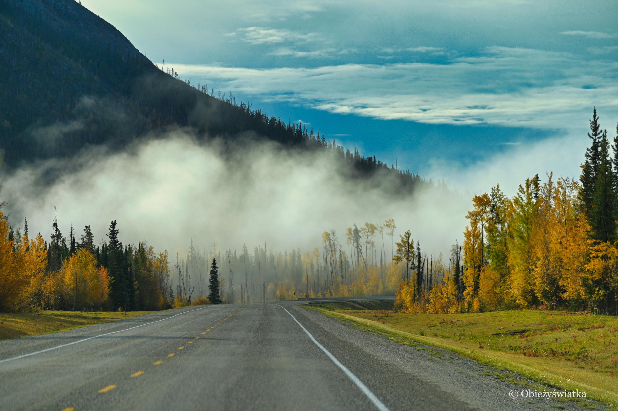 Otulony mgłą - Alaska Highway, Kanada