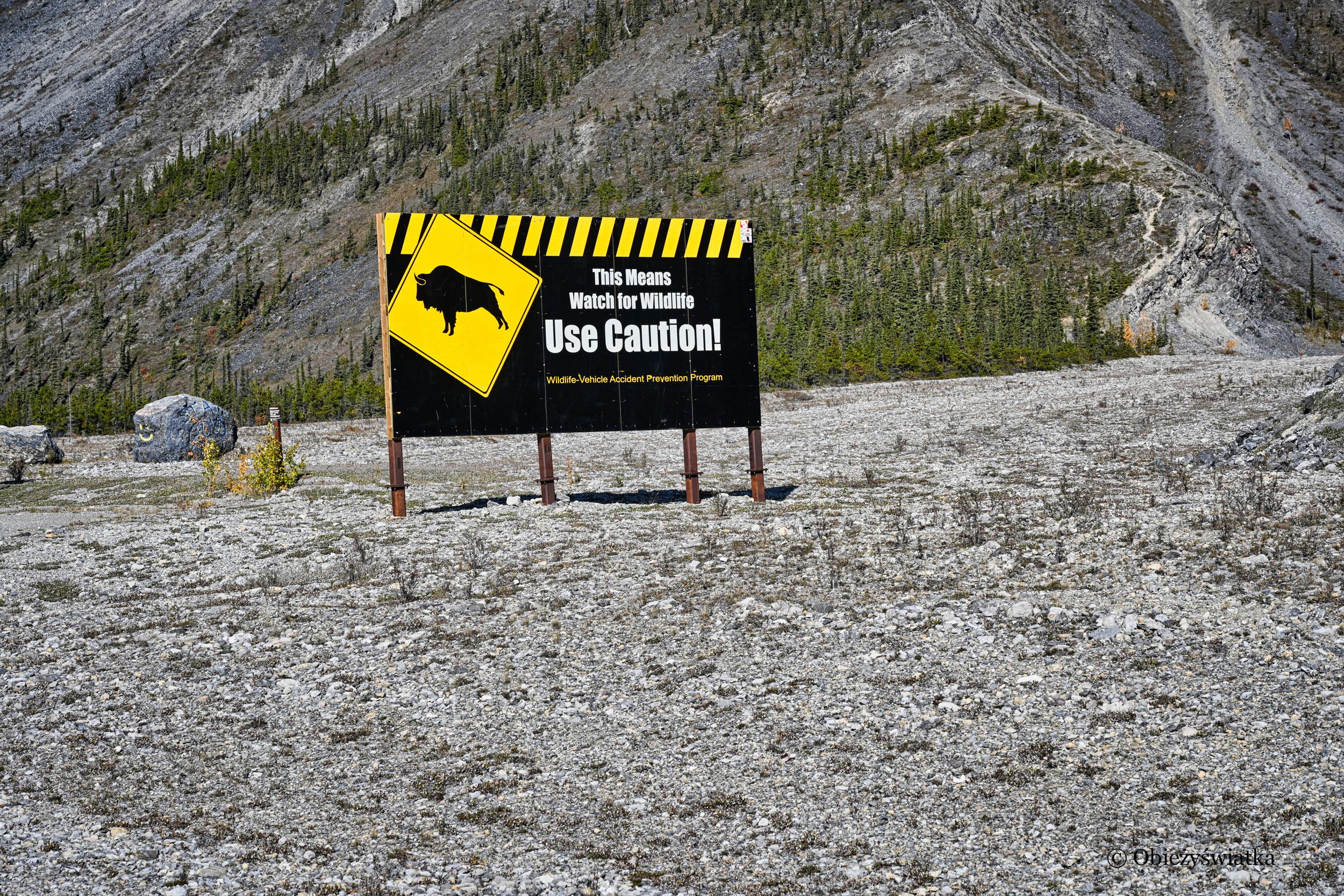 Bizony! - Alaska Highway, Kanada
