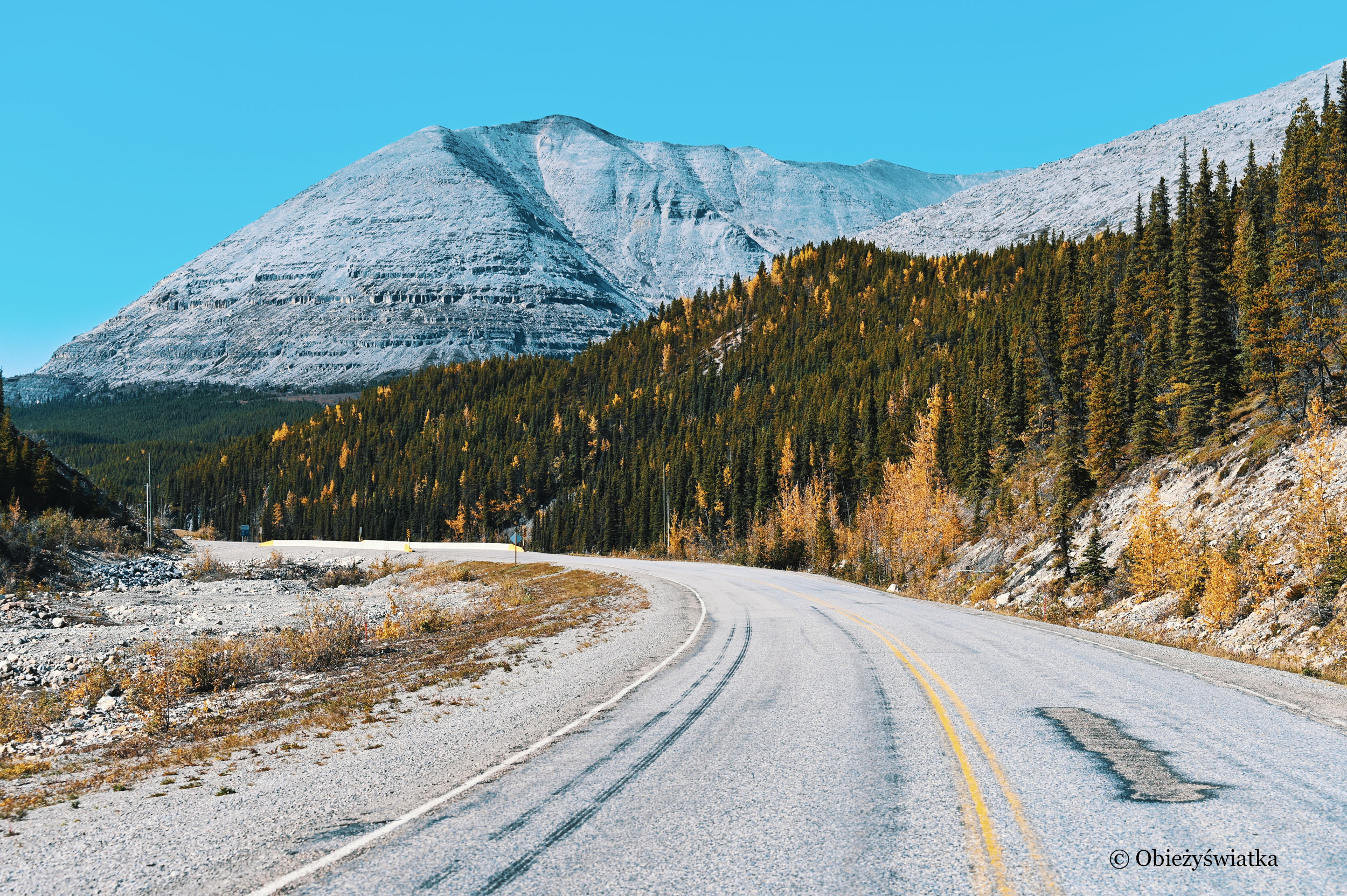 W drodze - Alaska Highway, Kanada
