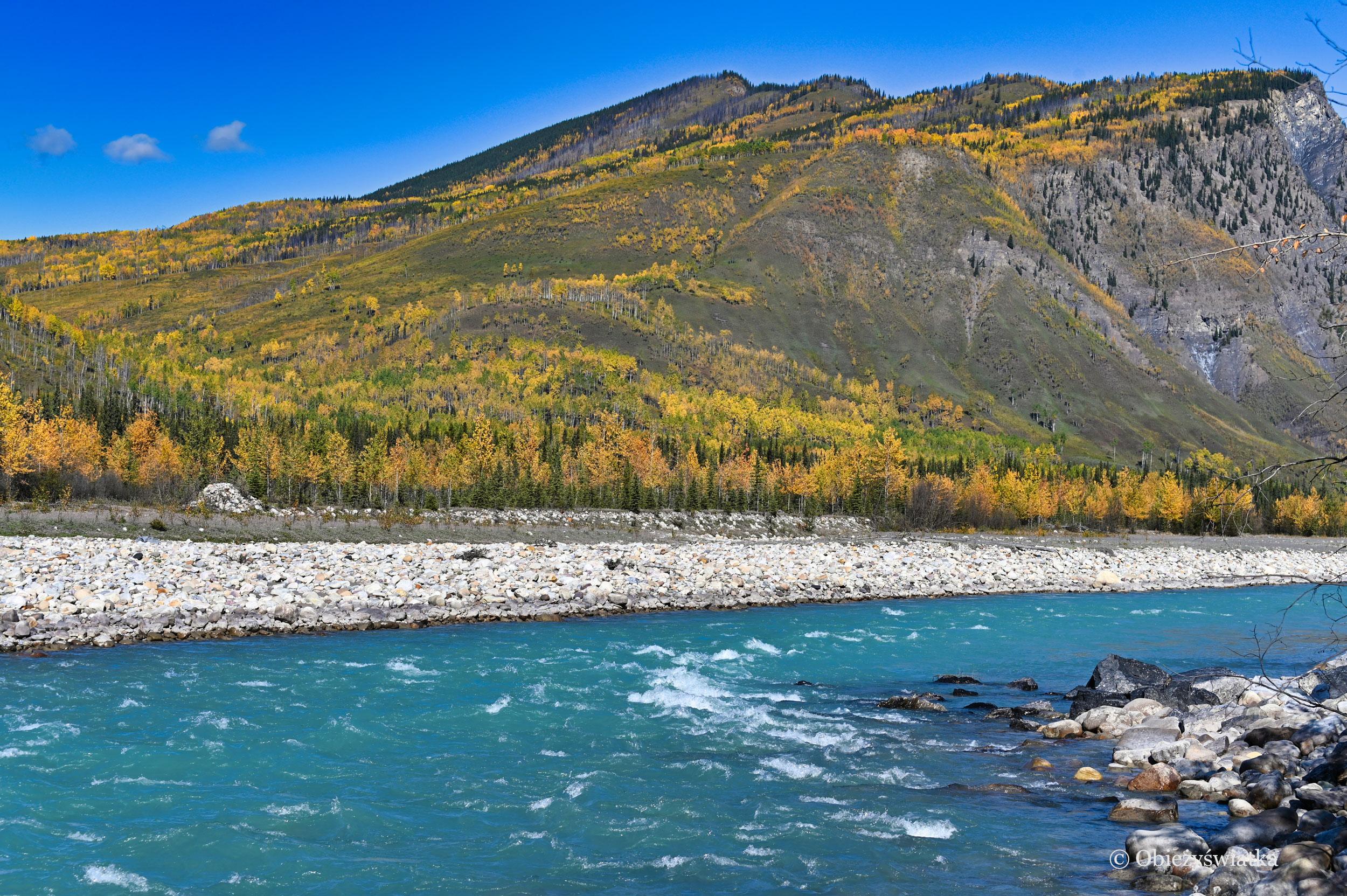 Jesienne kolory lasu i błękitna rzeka, Alaska Highway, Kanada